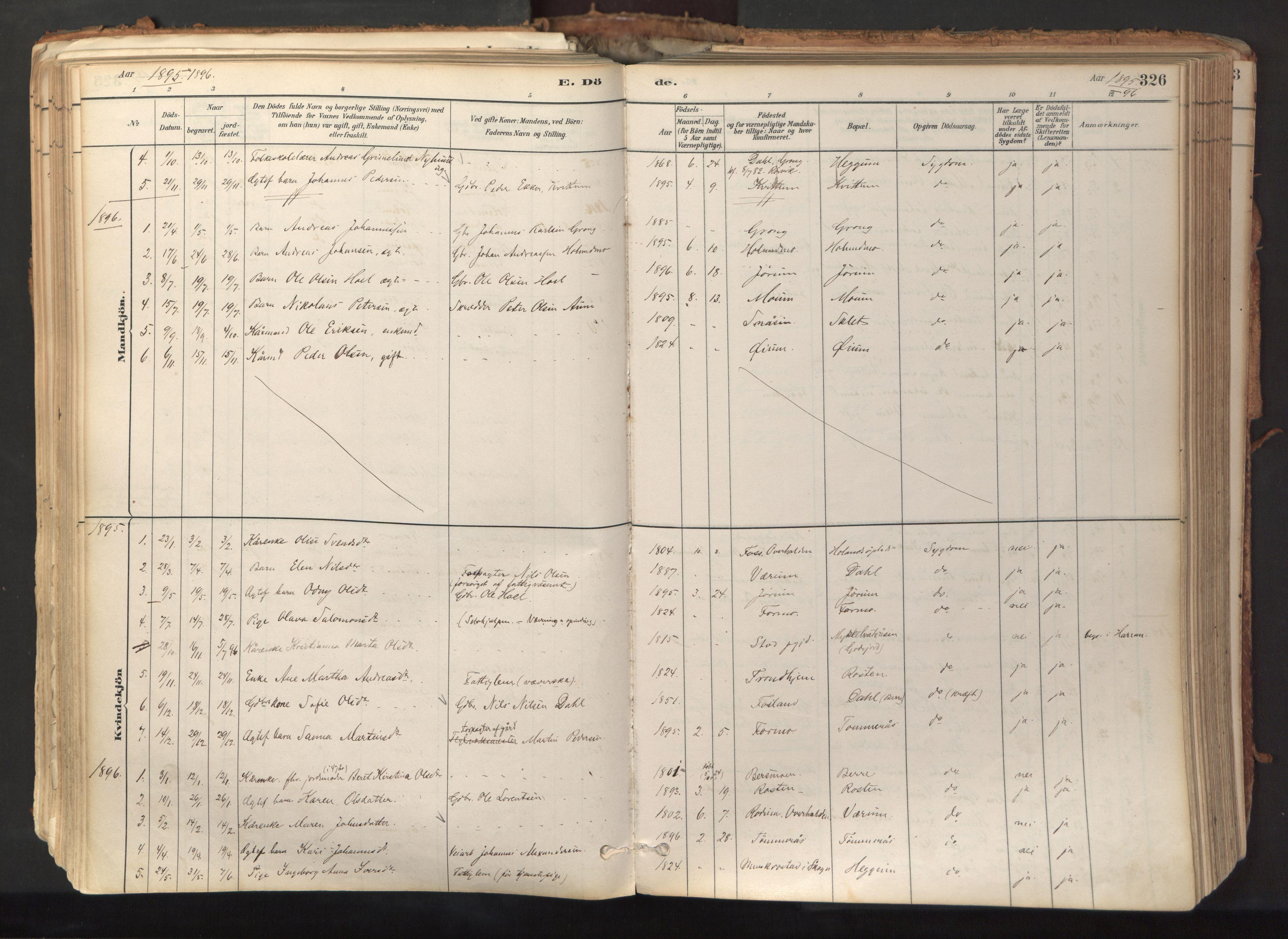 SAT, Ministerialprotokoller, klokkerbøker og fødselsregistre - Nord-Trøndelag, 758/L0519: Ministerialbok nr. 758A04, 1880-1926, s. 326