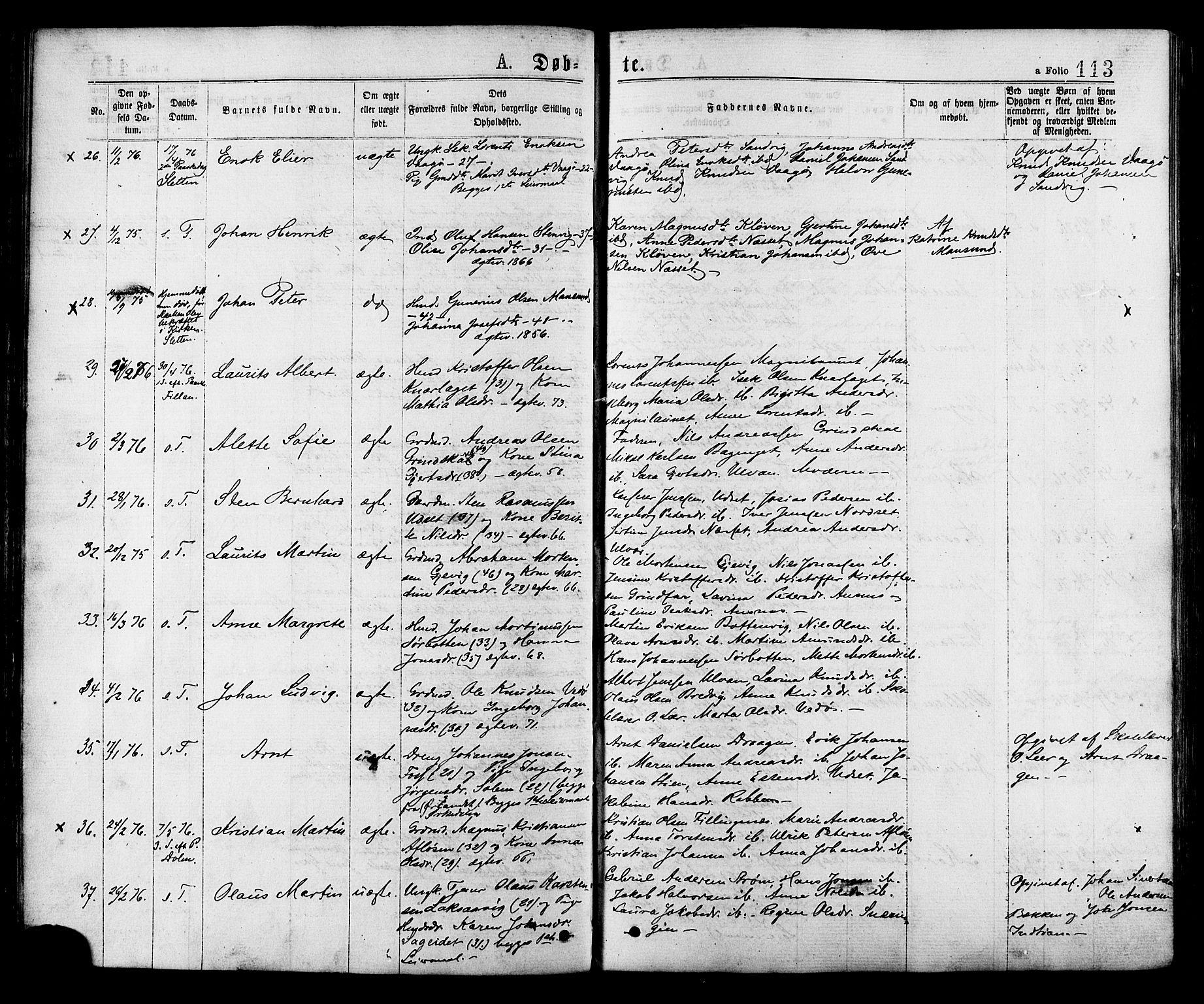 SAT, Ministerialprotokoller, klokkerbøker og fødselsregistre - Sør-Trøndelag, 634/L0532: Ministerialbok nr. 634A08, 1871-1881, s. 113