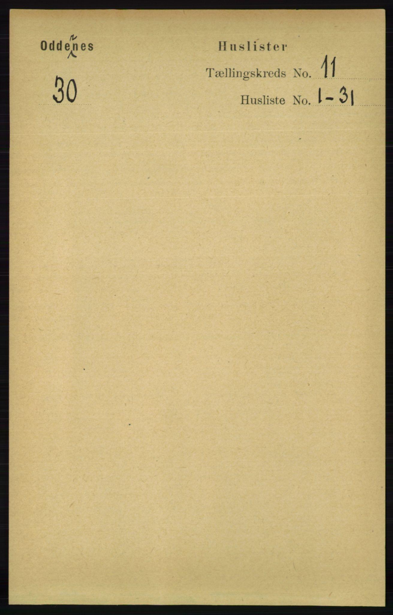 RA, Folketelling 1891 for 1012 Oddernes herred, 1891, s. 4102