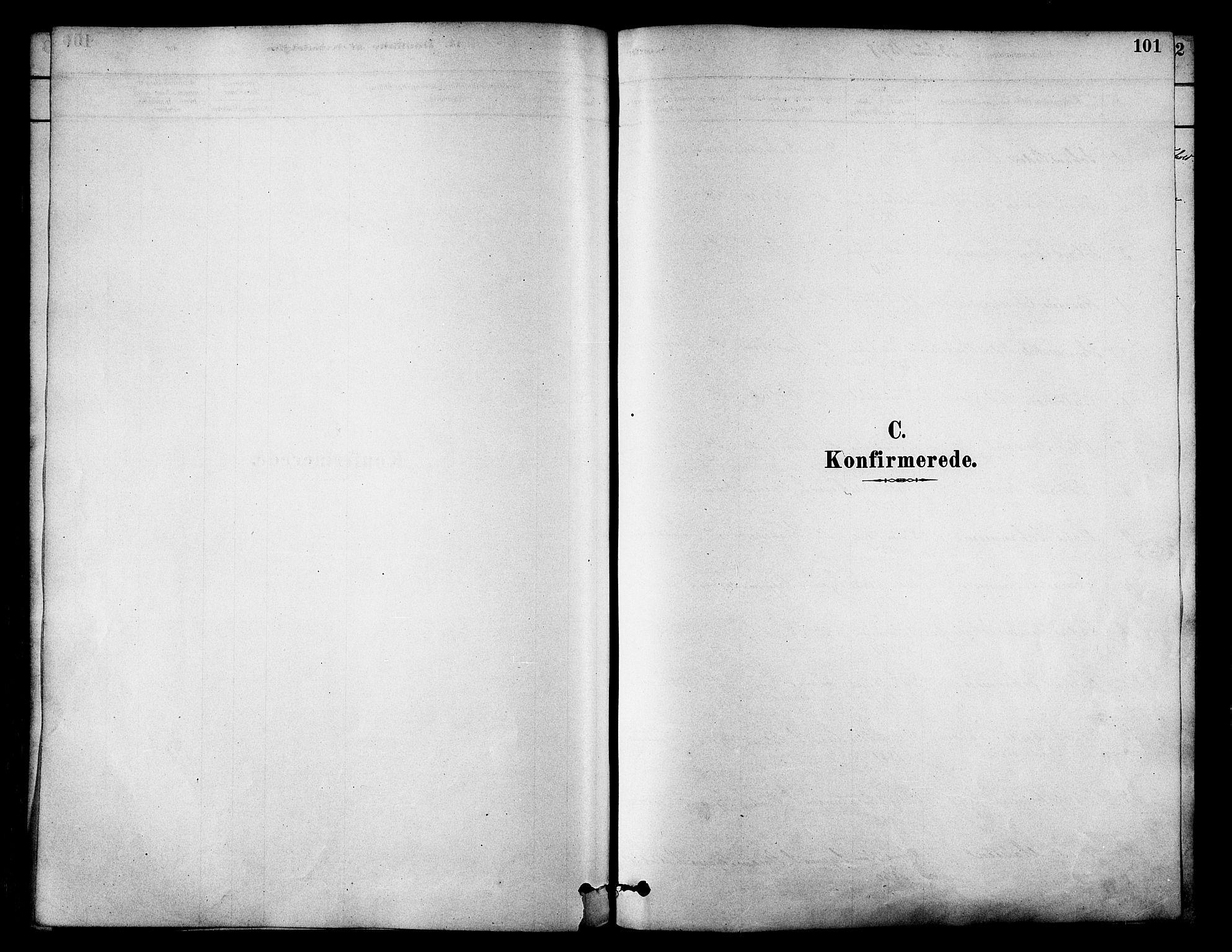 SATØ, Skjervøy sokneprestkontor, H/Ha/Haa/L0009kirke: Ministerialbok nr. 9, 1878-1887, s. 101