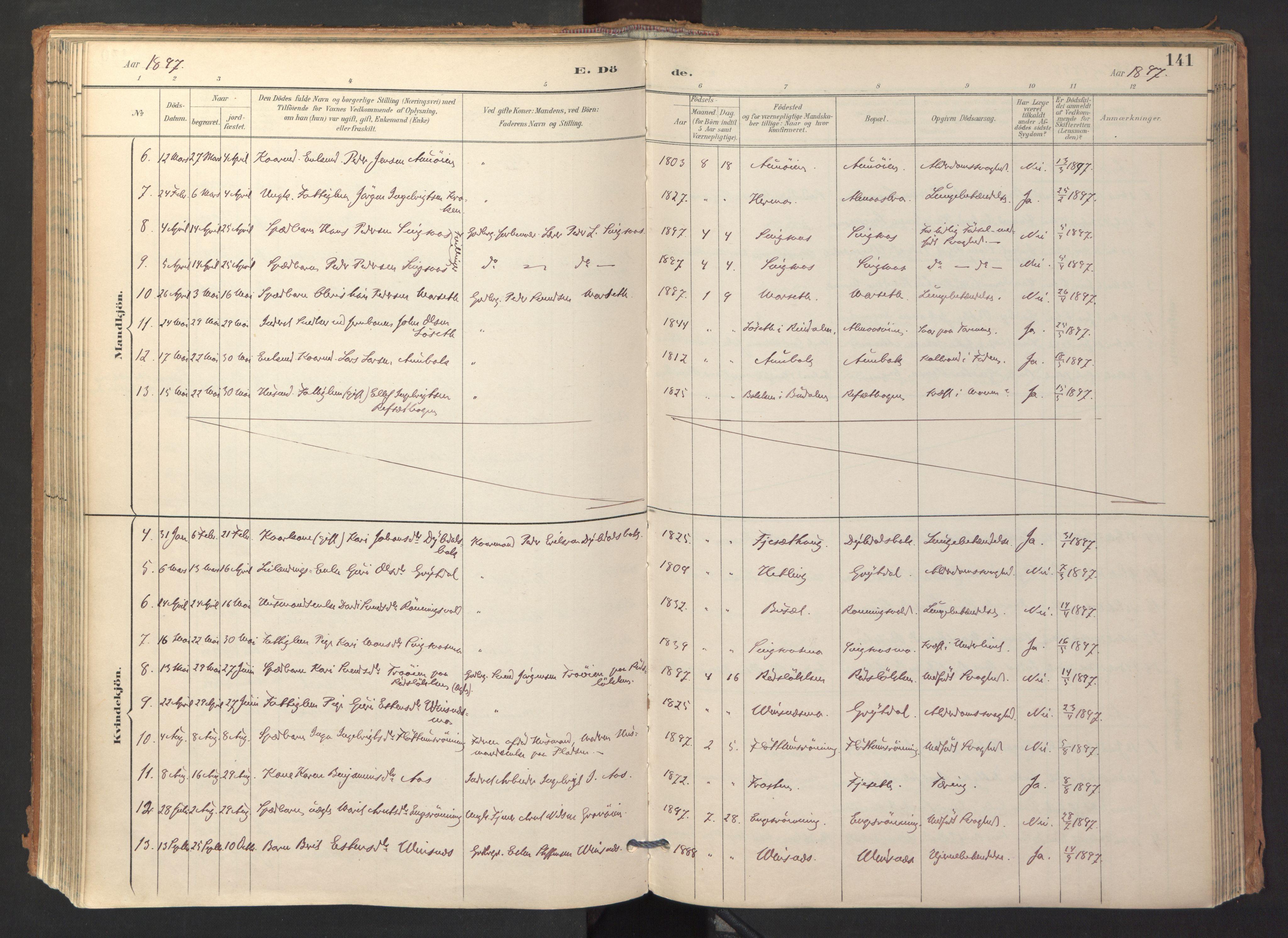 SAT, Ministerialprotokoller, klokkerbøker og fødselsregistre - Sør-Trøndelag, 688/L1025: Ministerialbok nr. 688A02, 1891-1909, s. 141