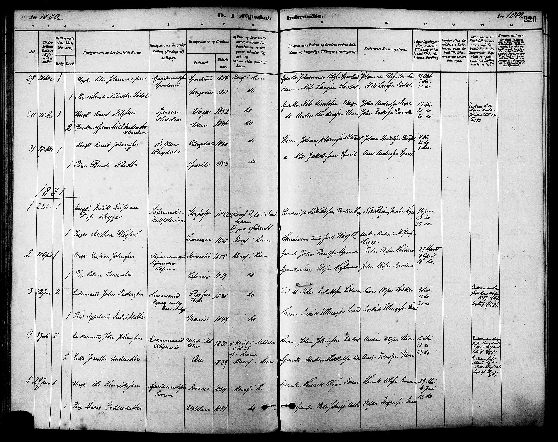 SAT, Ministerialprotokoller, klokkerbøker og fødselsregistre - Sør-Trøndelag, 630/L0496: Ministerialbok nr. 630A09, 1879-1895, s. 229