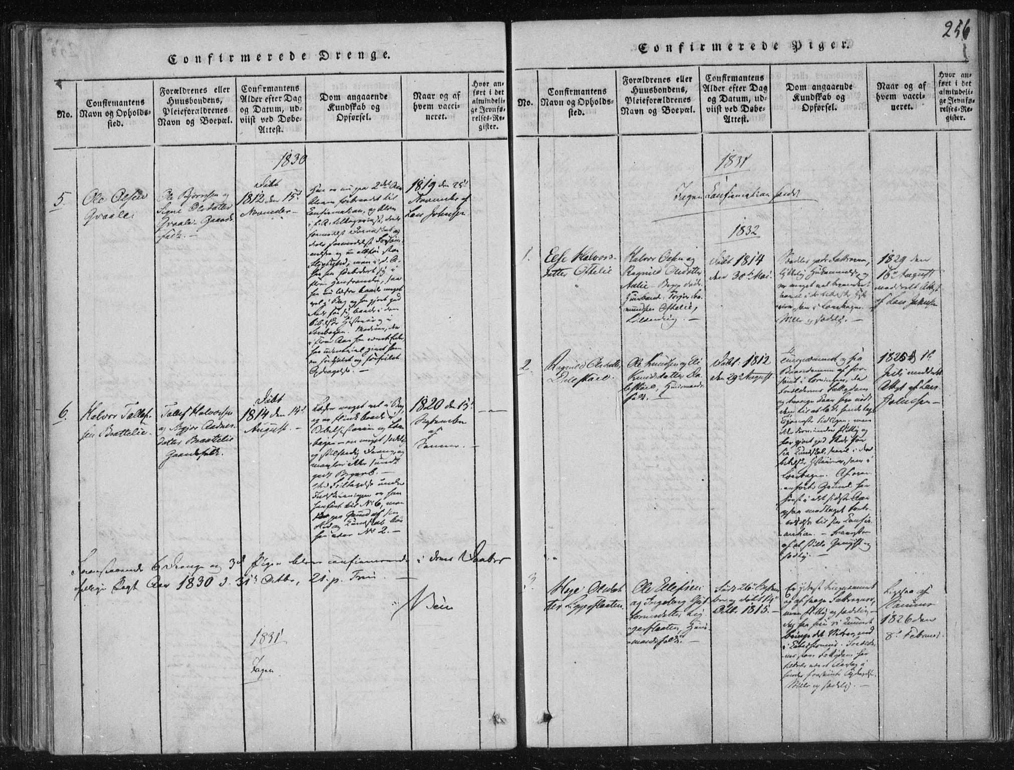 SAKO, Lårdal kirkebøker, F/Fc/L0001: Ministerialbok nr. III 1, 1815-1860, s. 256
