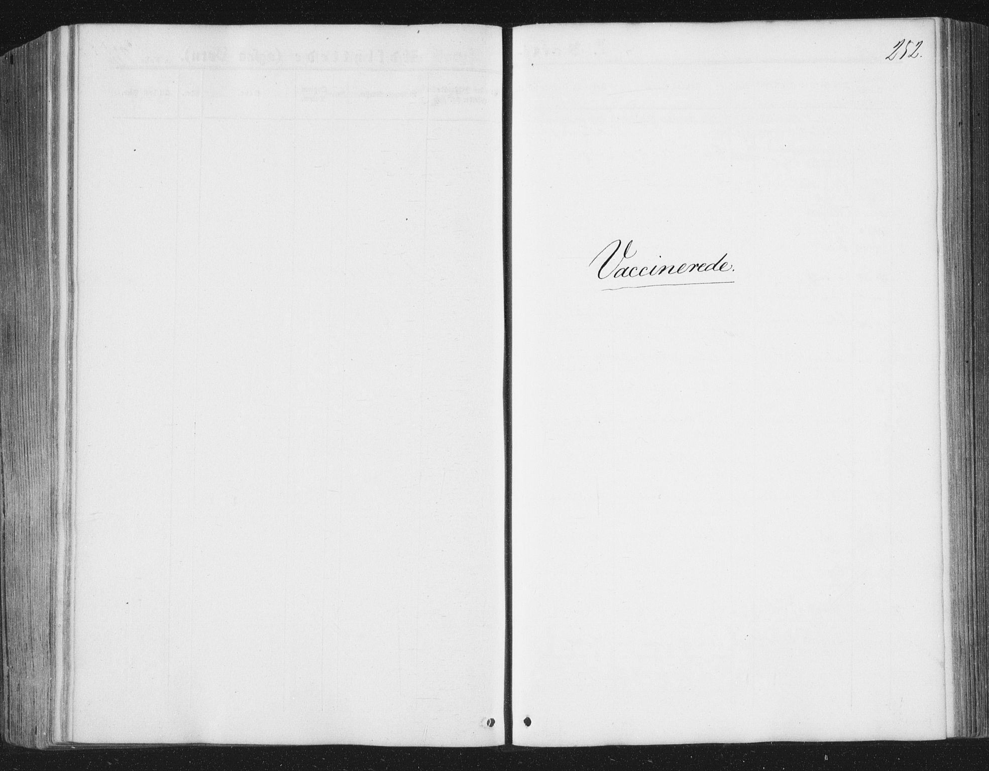 SAT, Ministerialprotokoller, klokkerbøker og fødselsregistre - Nord-Trøndelag, 749/L0472: Ministerialbok nr. 749A06, 1857-1873, s. 252