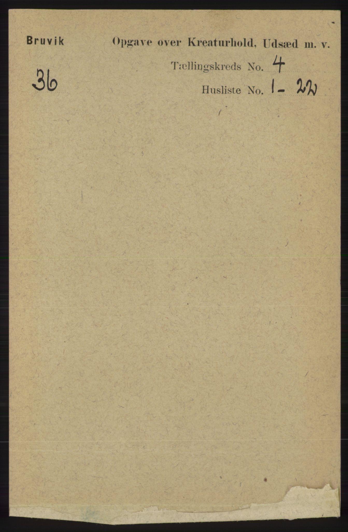 RA, Folketelling 1891 for 1251 Bruvik herred, 1891, s. 4393