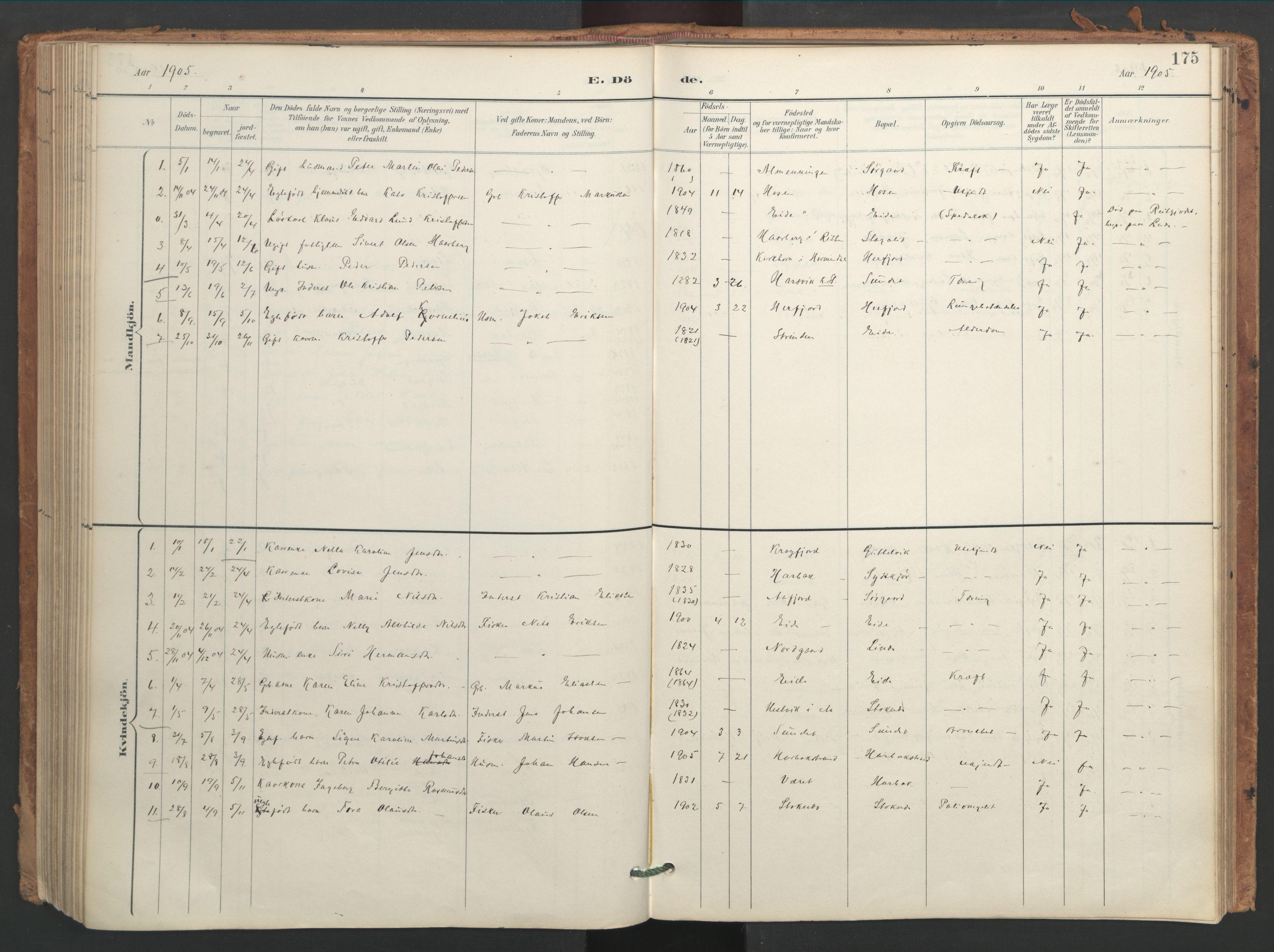 SAT, Ministerialprotokoller, klokkerbøker og fødselsregistre - Sør-Trøndelag, 656/L0693: Ministerialbok nr. 656A02, 1894-1913, s. 175