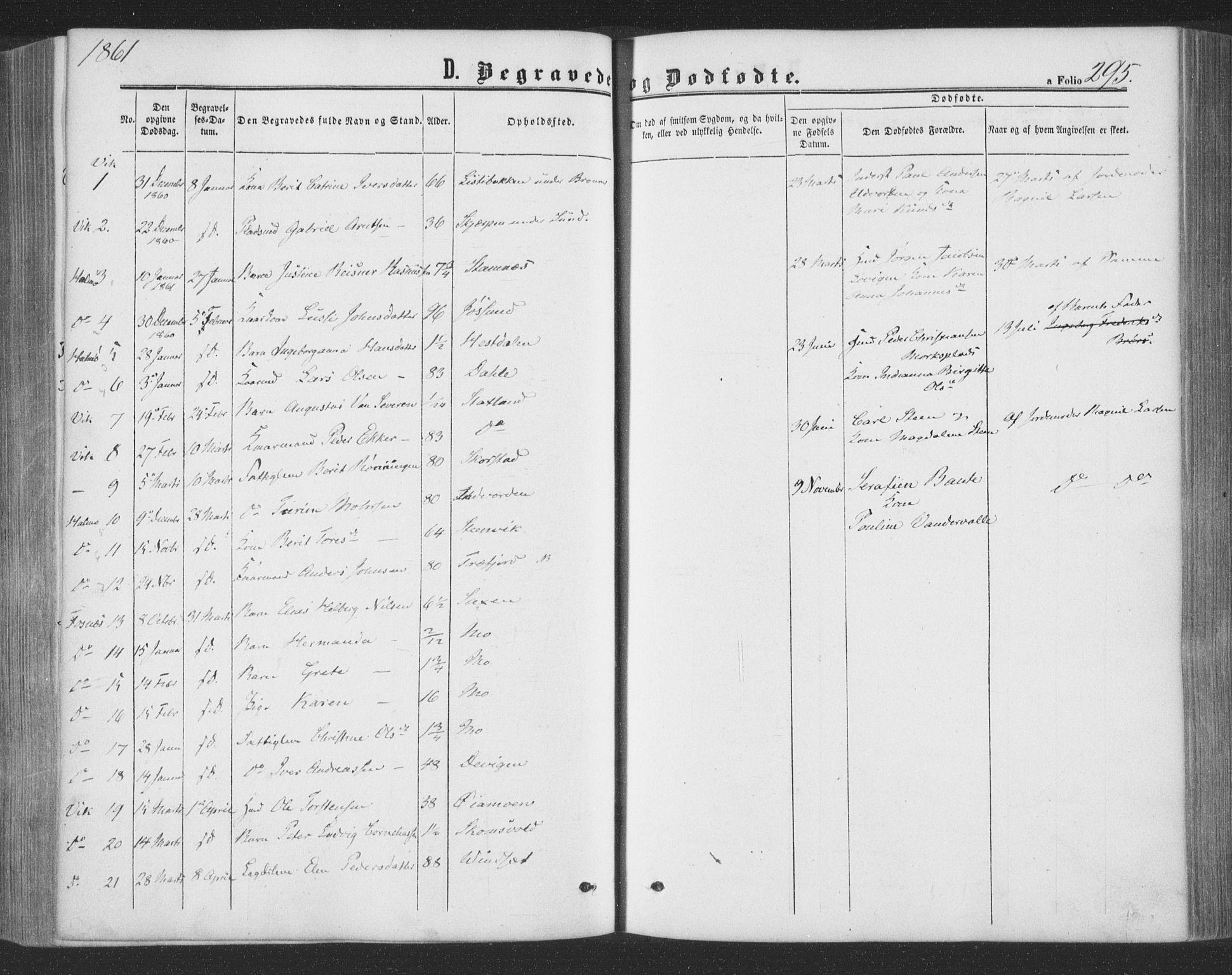 SAT, Ministerialprotokoller, klokkerbøker og fødselsregistre - Nord-Trøndelag, 773/L0615: Ministerialbok nr. 773A06, 1857-1870, s. 295