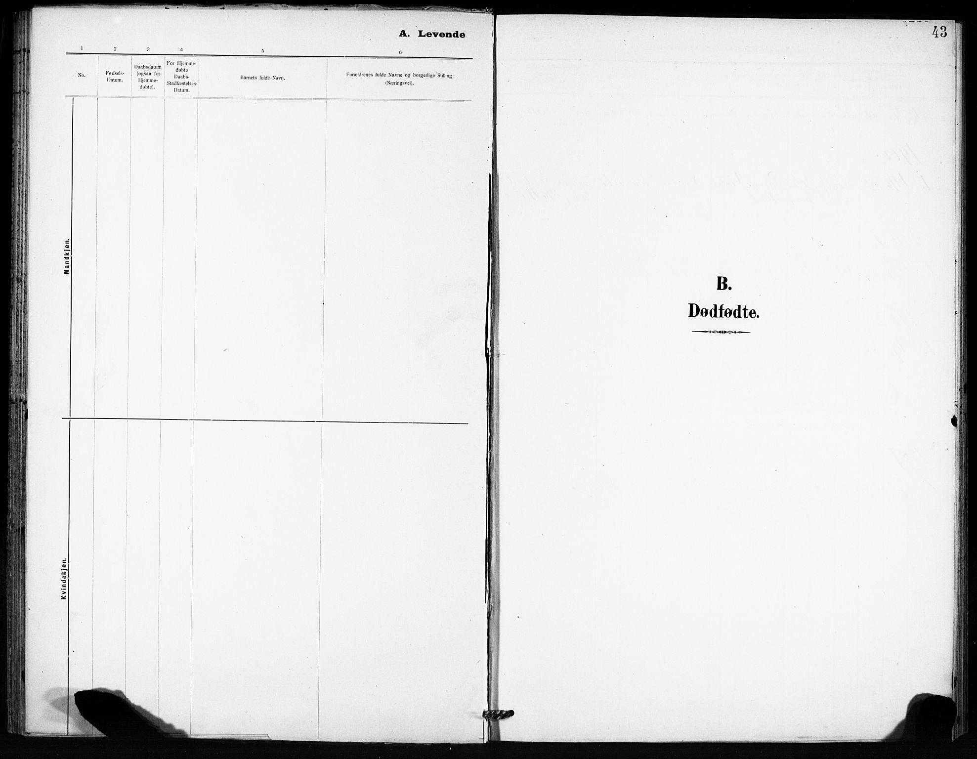 SAT, Ministerialprotokoller, klokkerbøker og fødselsregistre - Sør-Trøndelag, 666/L0787: Ministerialbok nr. 666A05, 1895-1908, s. 43