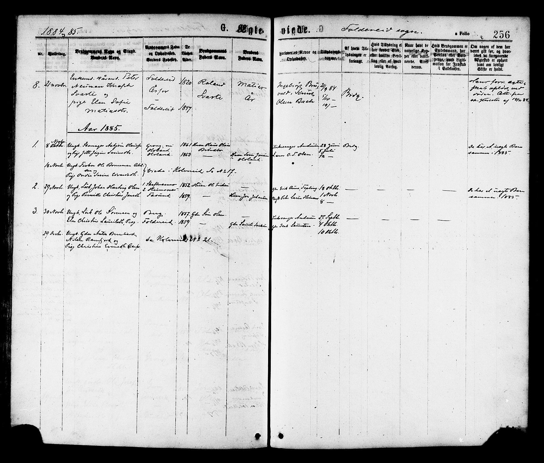 SAT, Ministerialprotokoller, klokkerbøker og fødselsregistre - Nord-Trøndelag, 780/L0642: Ministerialbok nr. 780A07 /2, 1878-1885, s. 256