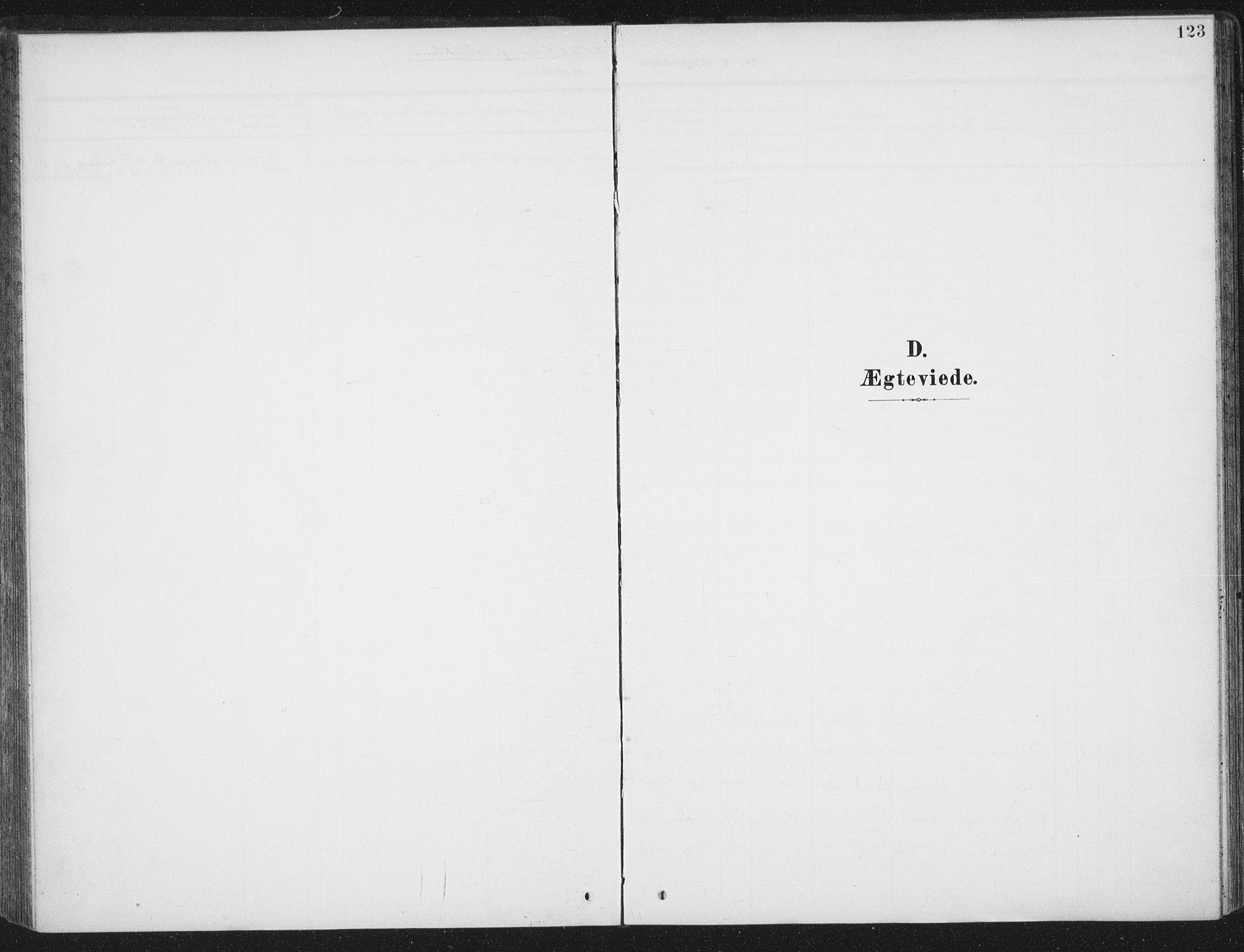 SAT, Ministerialprotokoller, klokkerbøker og fødselsregistre - Sør-Trøndelag, 657/L0709: Ministerialbok nr. 657A10, 1905-1919, s. 123