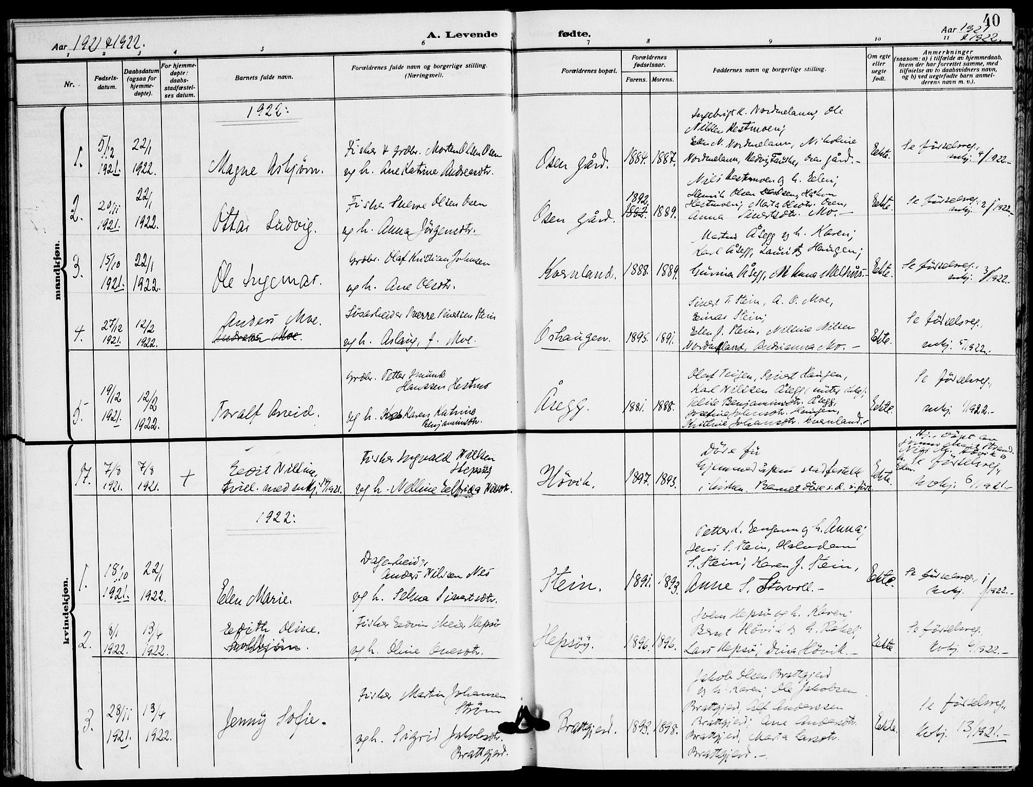 SAT, Ministerialprotokoller, klokkerbøker og fødselsregistre - Sør-Trøndelag, 658/L0724: Ministerialbok nr. 658A03, 1912-1924, s. 40