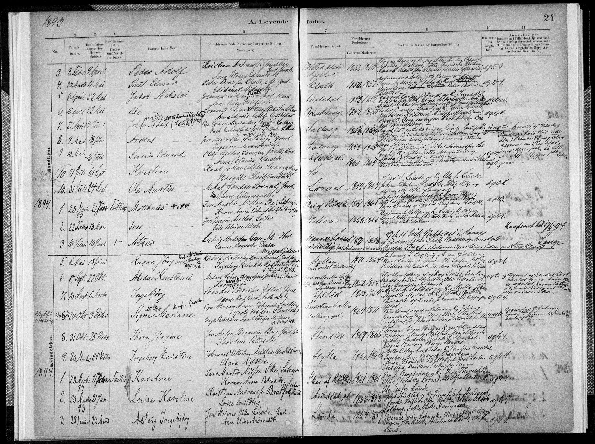 SAT, Ministerialprotokoller, klokkerbøker og fødselsregistre - Nord-Trøndelag, 731/L0309: Ministerialbok nr. 731A01, 1879-1918, s. 24
