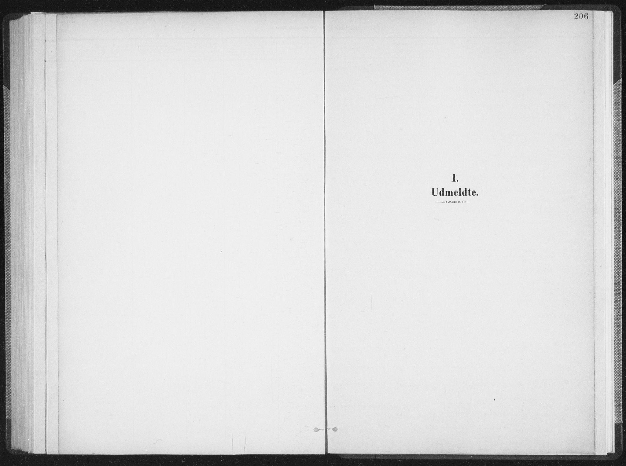 SAT, Ministerialprotokoller, klokkerbøker og fødselsregistre - Nordland, 897/L1400: Ministerialbok nr. 897A07, 1897-1908, s. 206