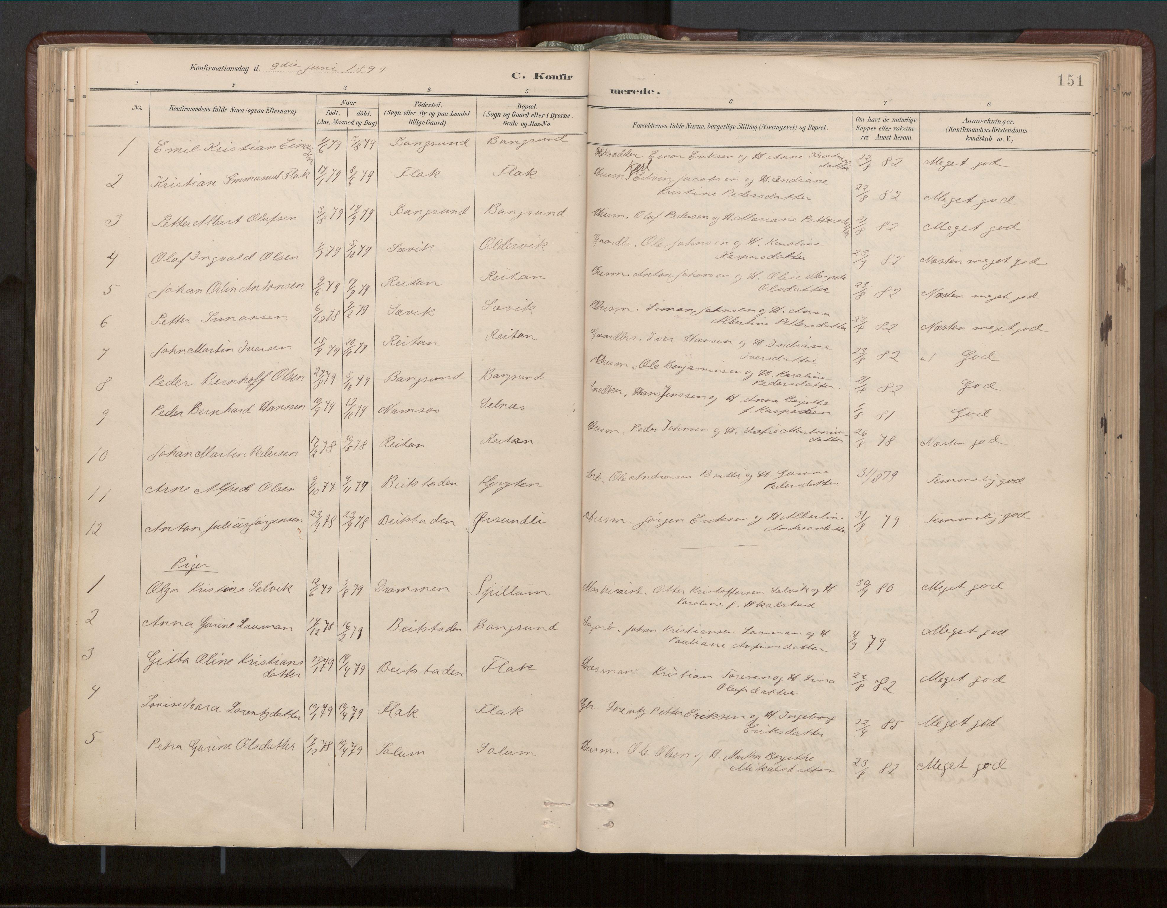 SAT, Ministerialprotokoller, klokkerbøker og fødselsregistre - Nord-Trøndelag, 770/L0589: Ministerialbok nr. 770A03, 1887-1929, s. 151