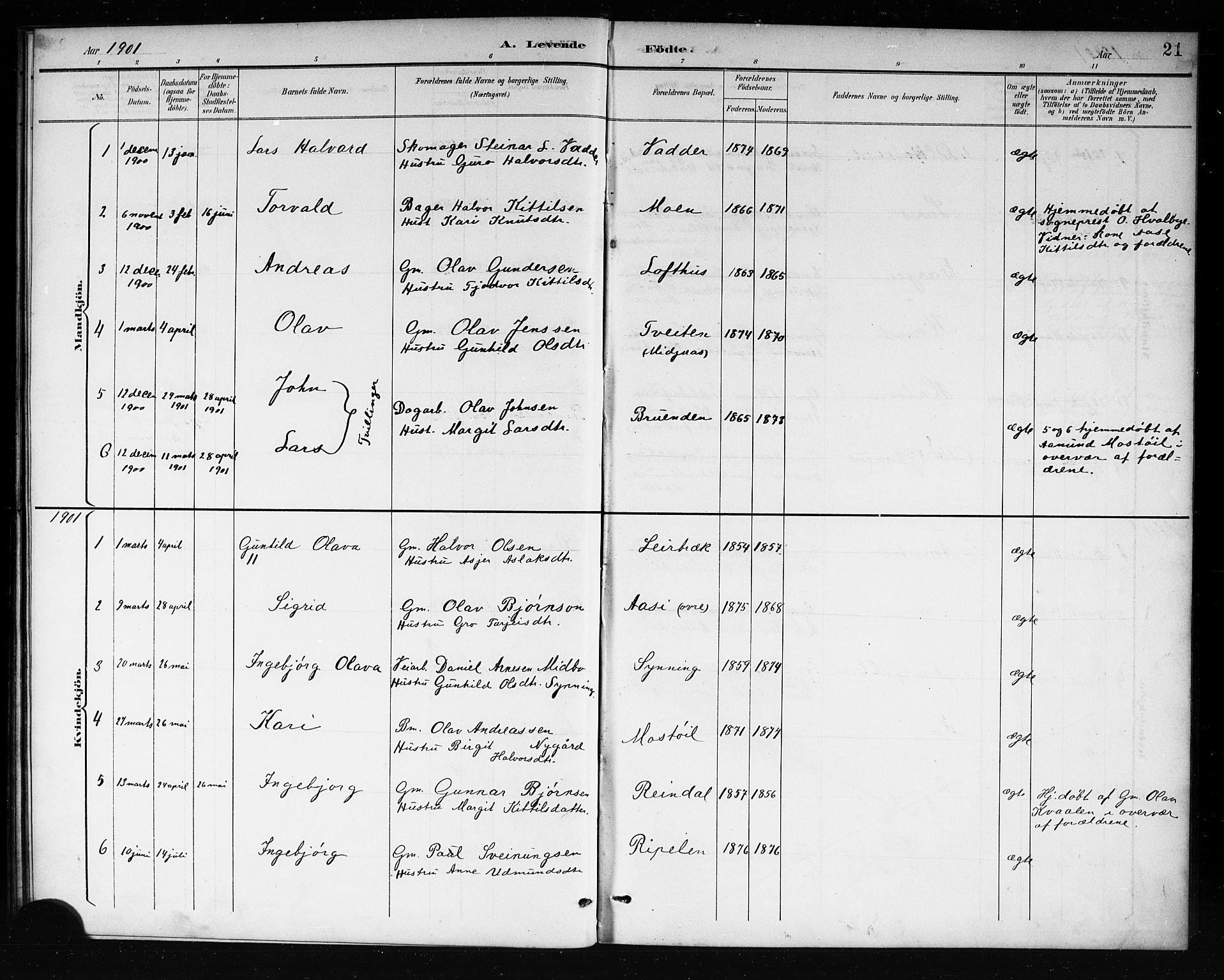 SAKO, Mo kirkebøker, G/Ga/L0002: Klokkerbok nr. I 2, 1892-1914, s. 21
