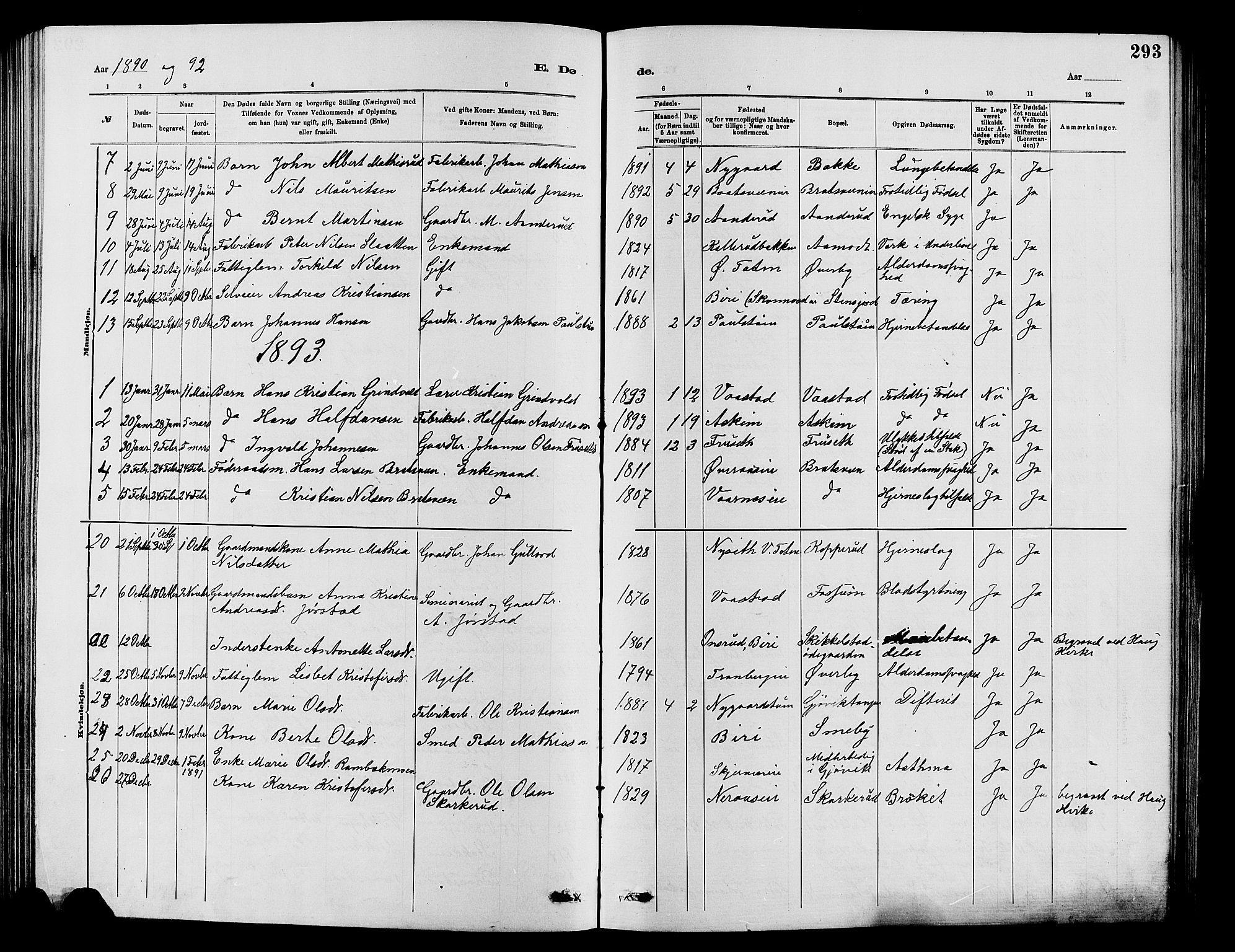 SAH, Vardal prestekontor, H/Ha/Hab/L0007: Klokkerbok nr. 7 /1, 1881-1895, s. 293