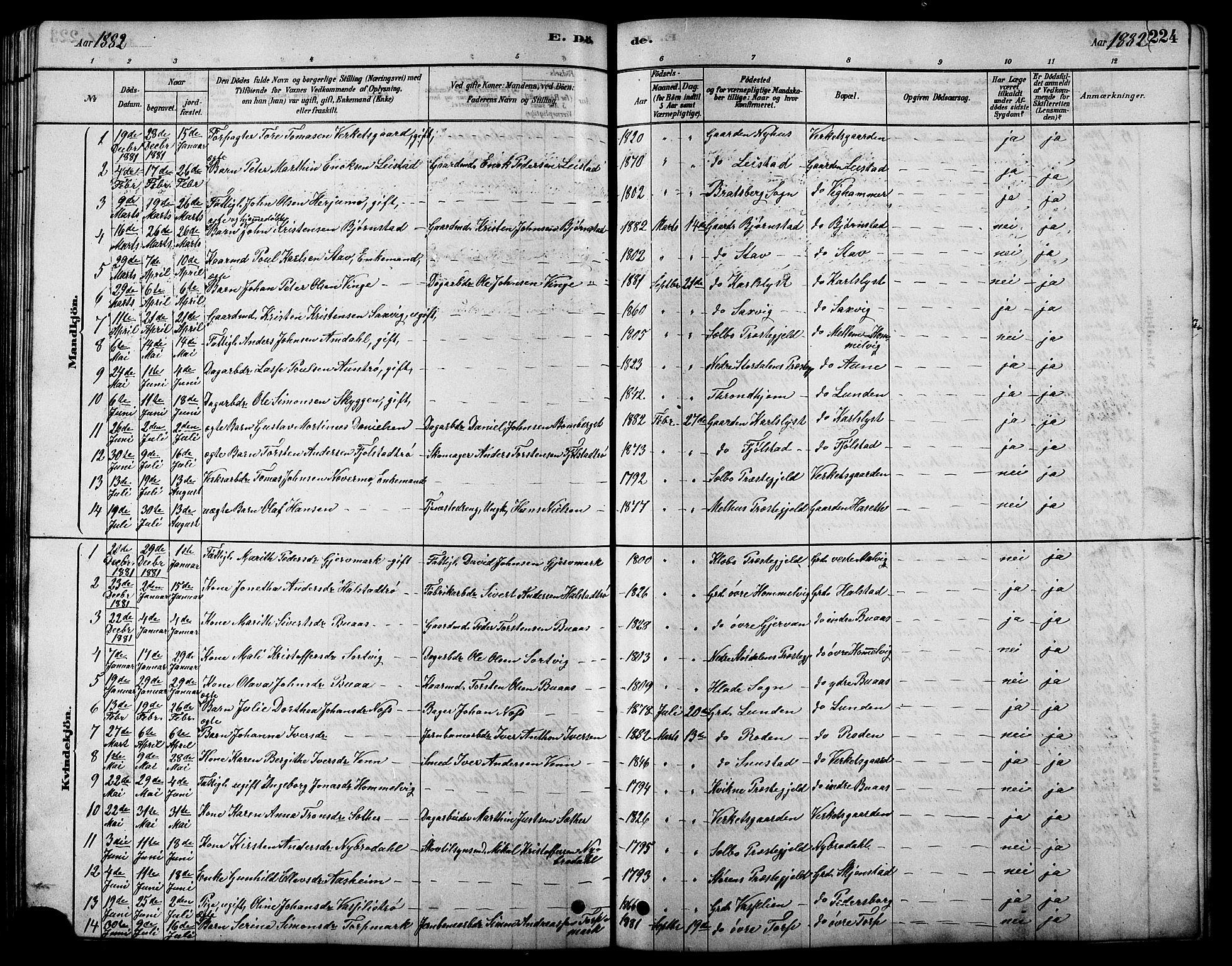 SAT, Ministerialprotokoller, klokkerbøker og fødselsregistre - Sør-Trøndelag, 616/L0423: Klokkerbok nr. 616C06, 1878-1903, s. 224