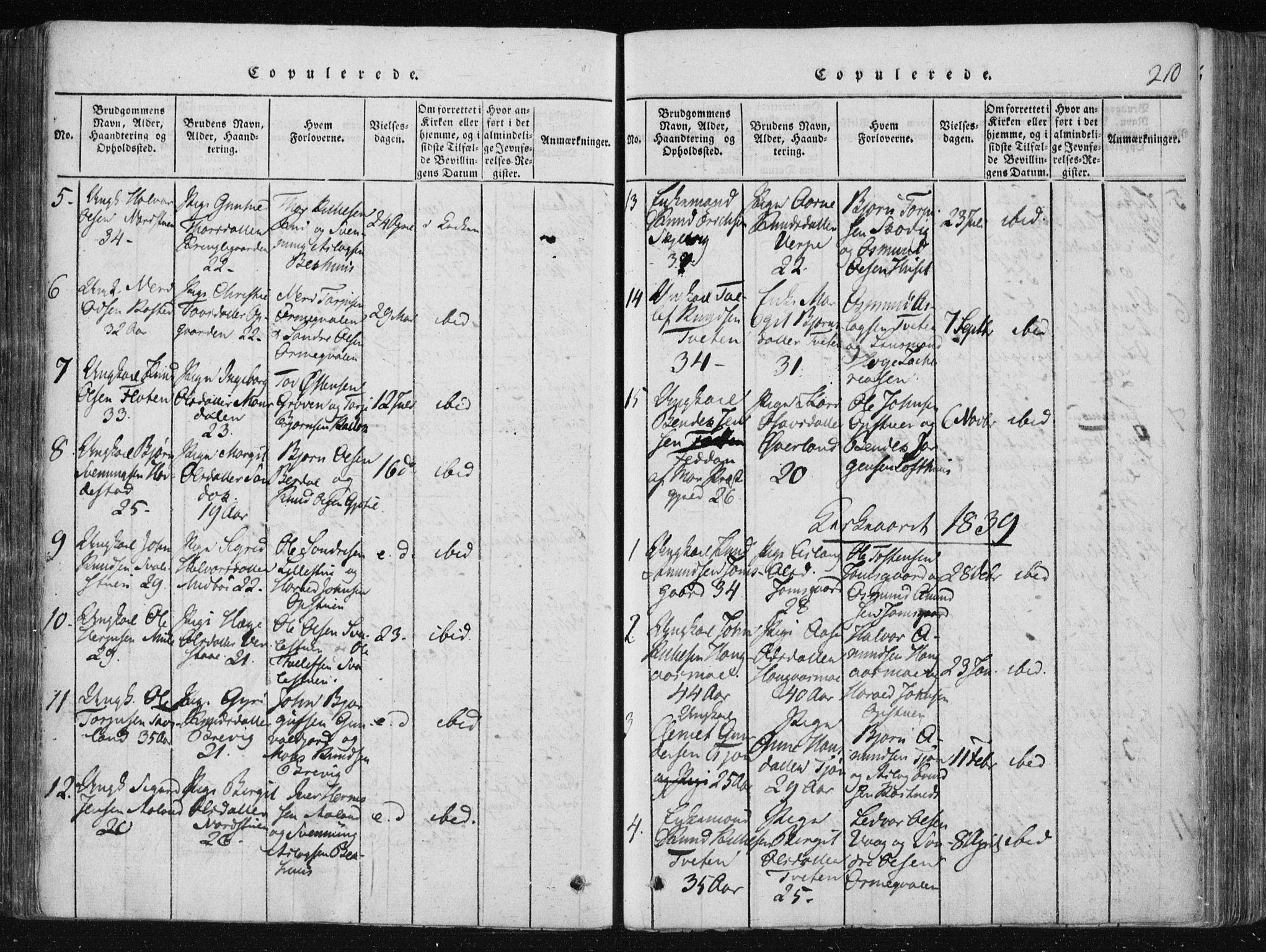 SAKO, Vinje kirkebøker, F/Fa/L0003: Ministerialbok nr. I 3, 1814-1843, s. 210