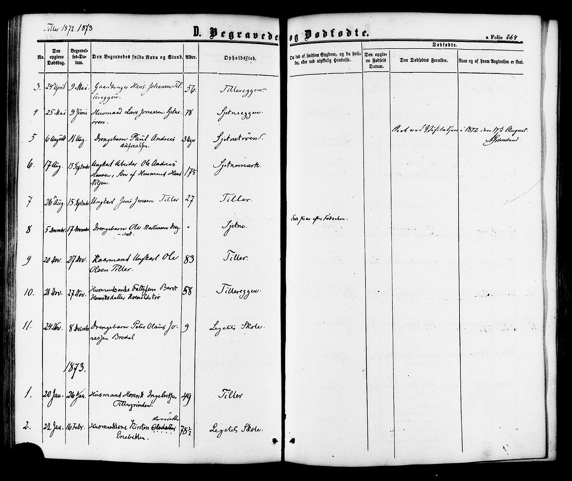 SAT, Ministerialprotokoller, klokkerbøker og fødselsregistre - Sør-Trøndelag, 618/L0443: Ministerialbok nr. 618A06 /2, 1863-1879, s. 264