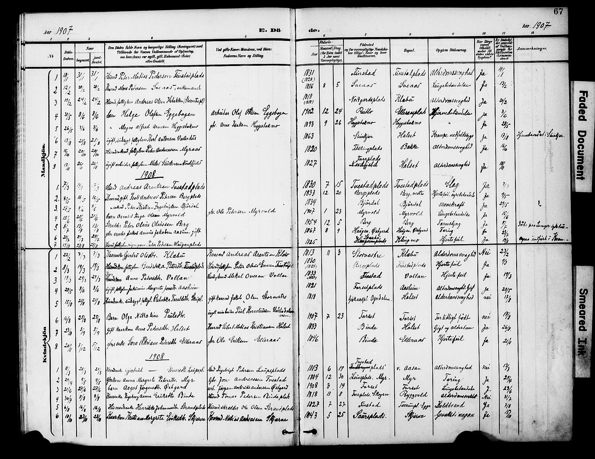 SAT, Ministerialprotokoller, klokkerbøker og fødselsregistre - Nord-Trøndelag, 746/L0452: Ministerialbok nr. 746A09, 1900-1908, s. 67