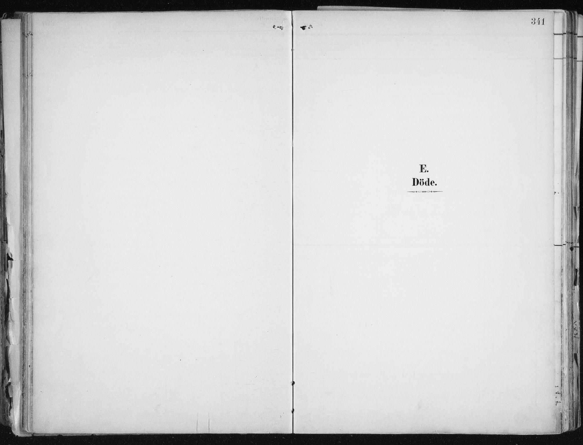 SATØ, Tromsø sokneprestkontor/stiftsprosti/domprosti, G/Ga/L0015kirke: Ministerialbok nr. 15, 1889-1899, s. 341