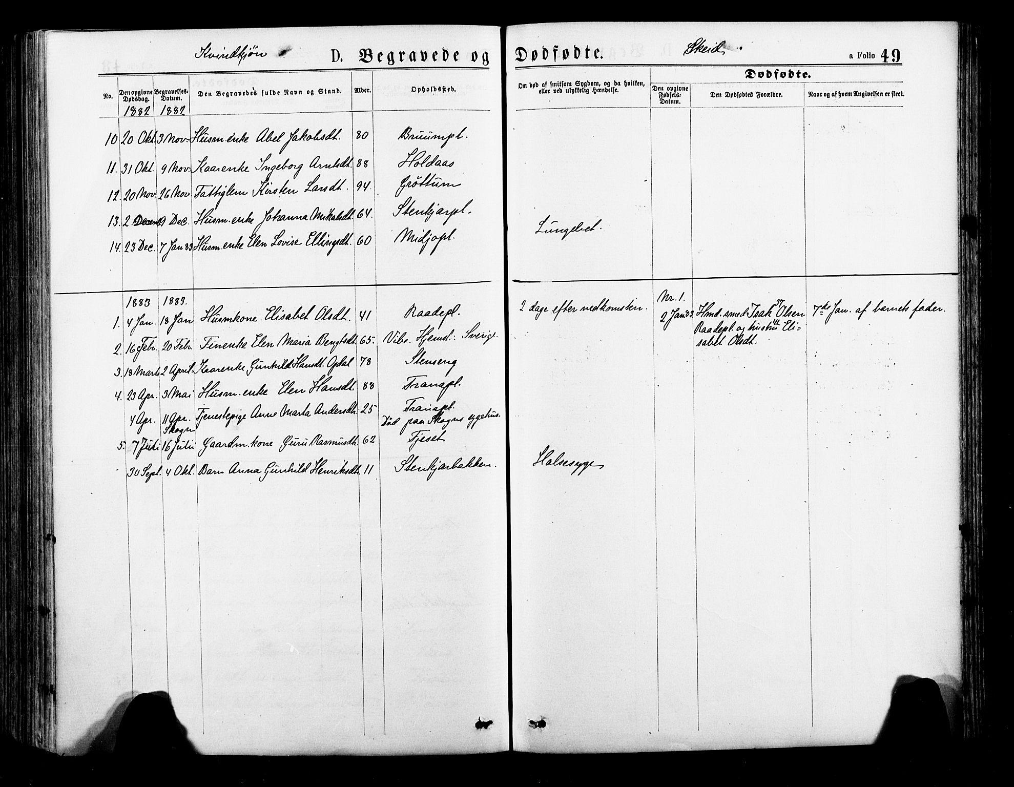 SAT, Ministerialprotokoller, klokkerbøker og fødselsregistre - Nord-Trøndelag, 735/L0348: Ministerialbok nr. 735A09 /2, 1873-1883, s. 49