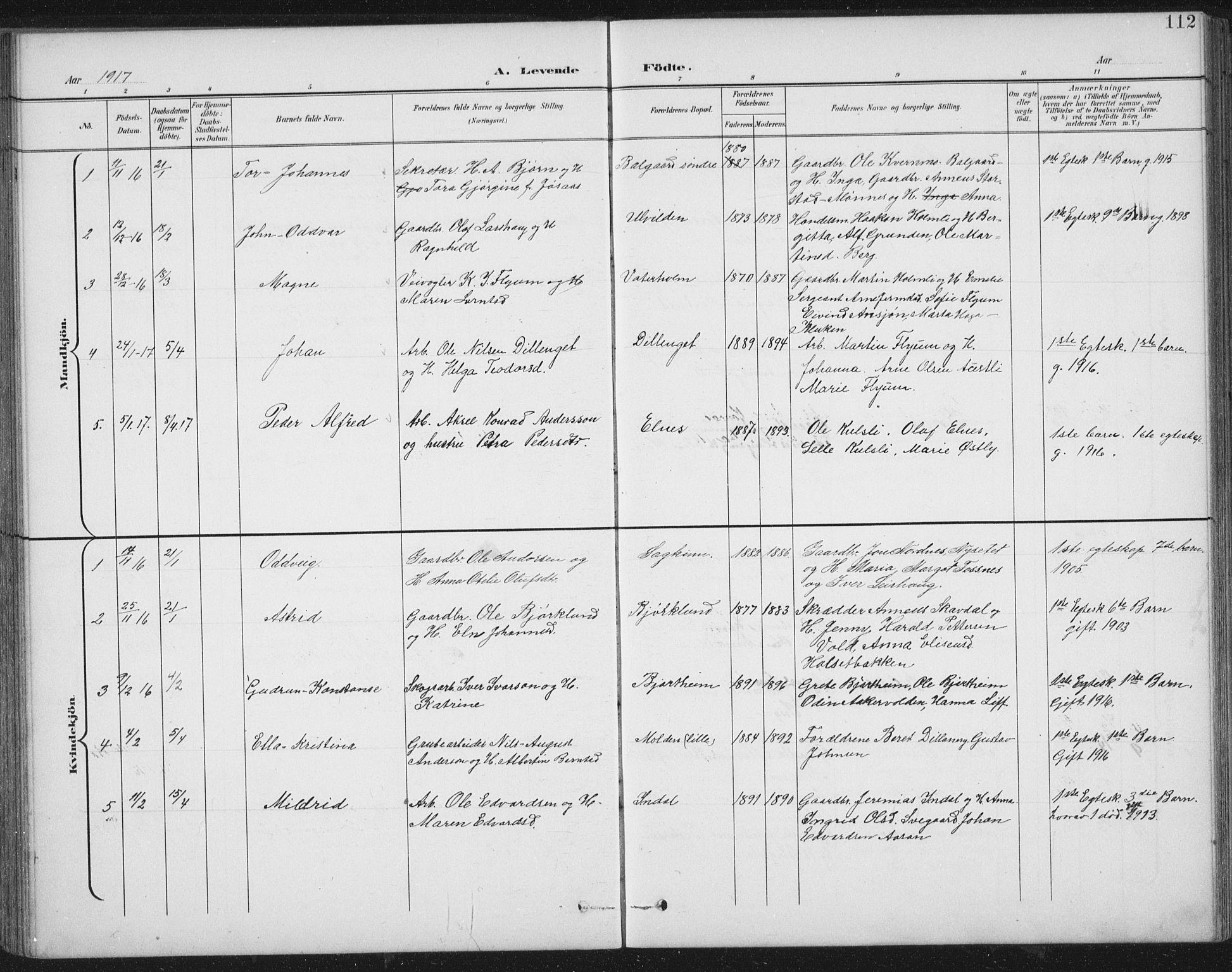SAT, Ministerialprotokoller, klokkerbøker og fødselsregistre - Nord-Trøndelag, 724/L0269: Klokkerbok nr. 724C05, 1899-1920, s. 112