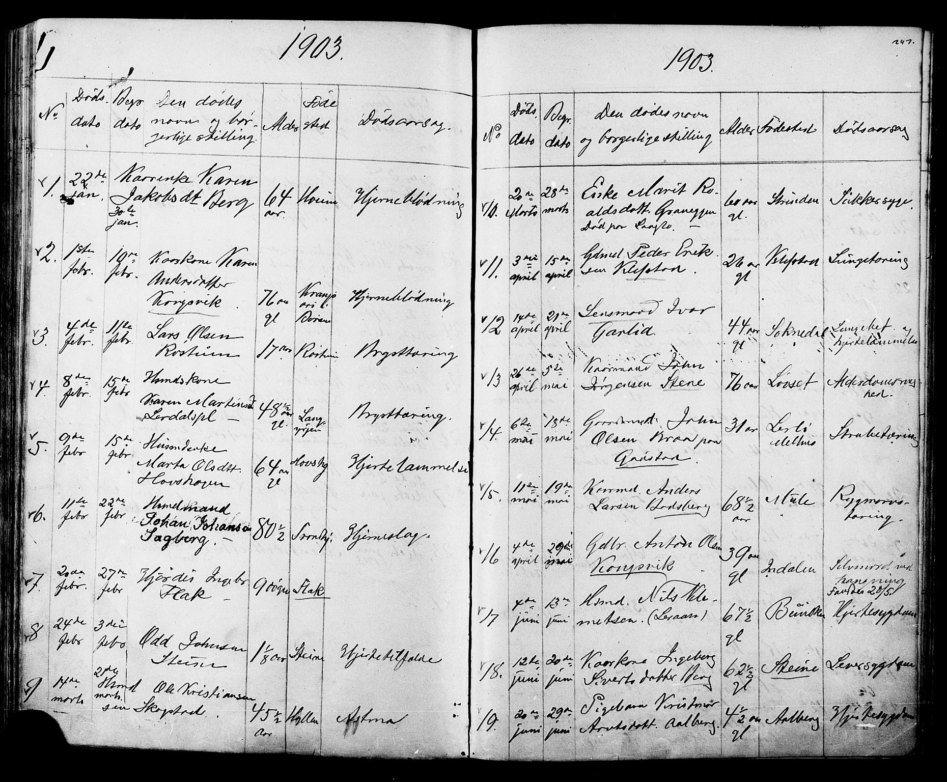 SAT, Ministerialprotokoller, klokkerbøker og fødselsregistre - Sør-Trøndelag, 612/L0387: Klokkerbok nr. 612C03, 1874-1908, s. 247