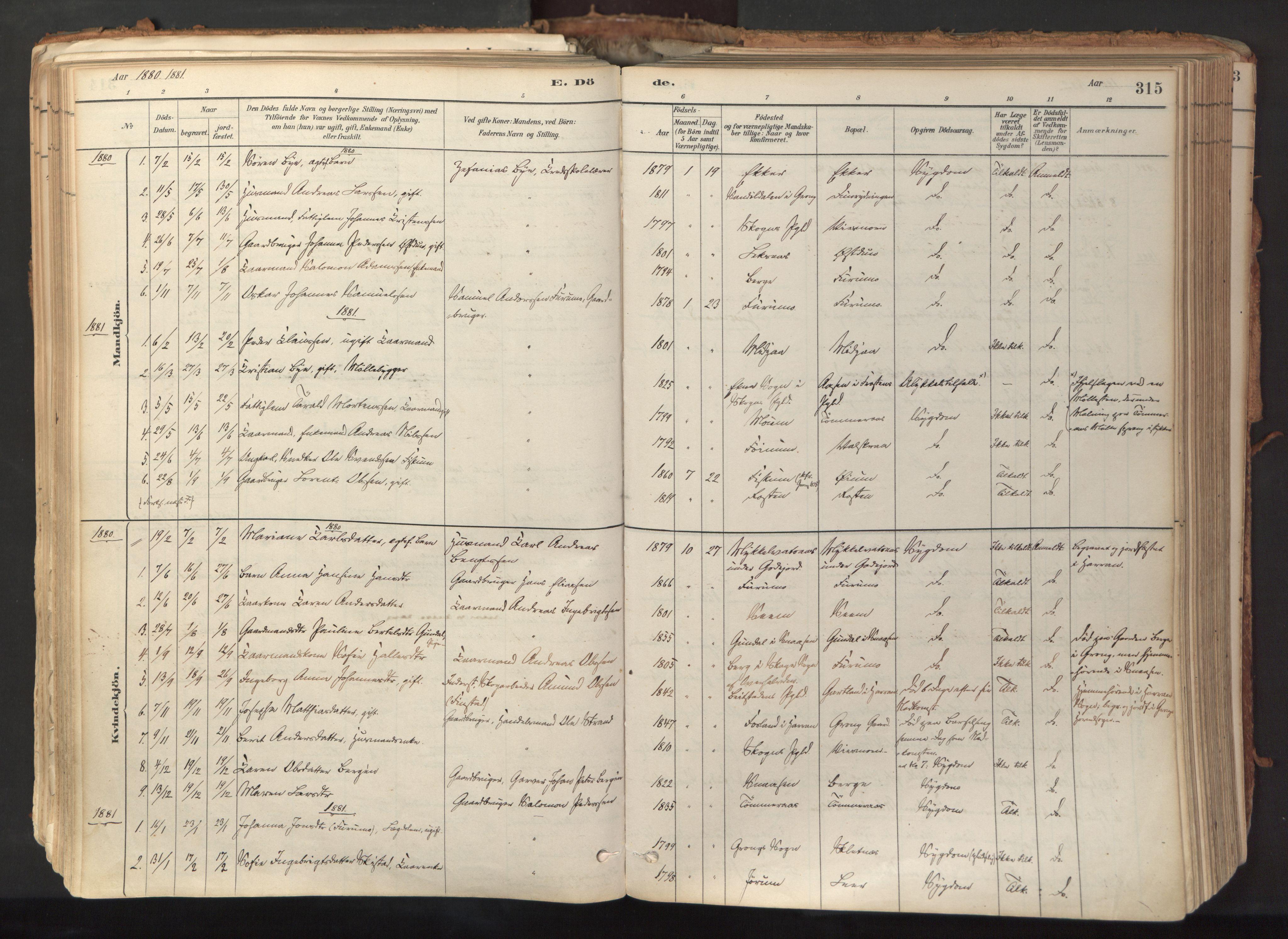 SAT, Ministerialprotokoller, klokkerbøker og fødselsregistre - Nord-Trøndelag, 758/L0519: Ministerialbok nr. 758A04, 1880-1926, s. 315