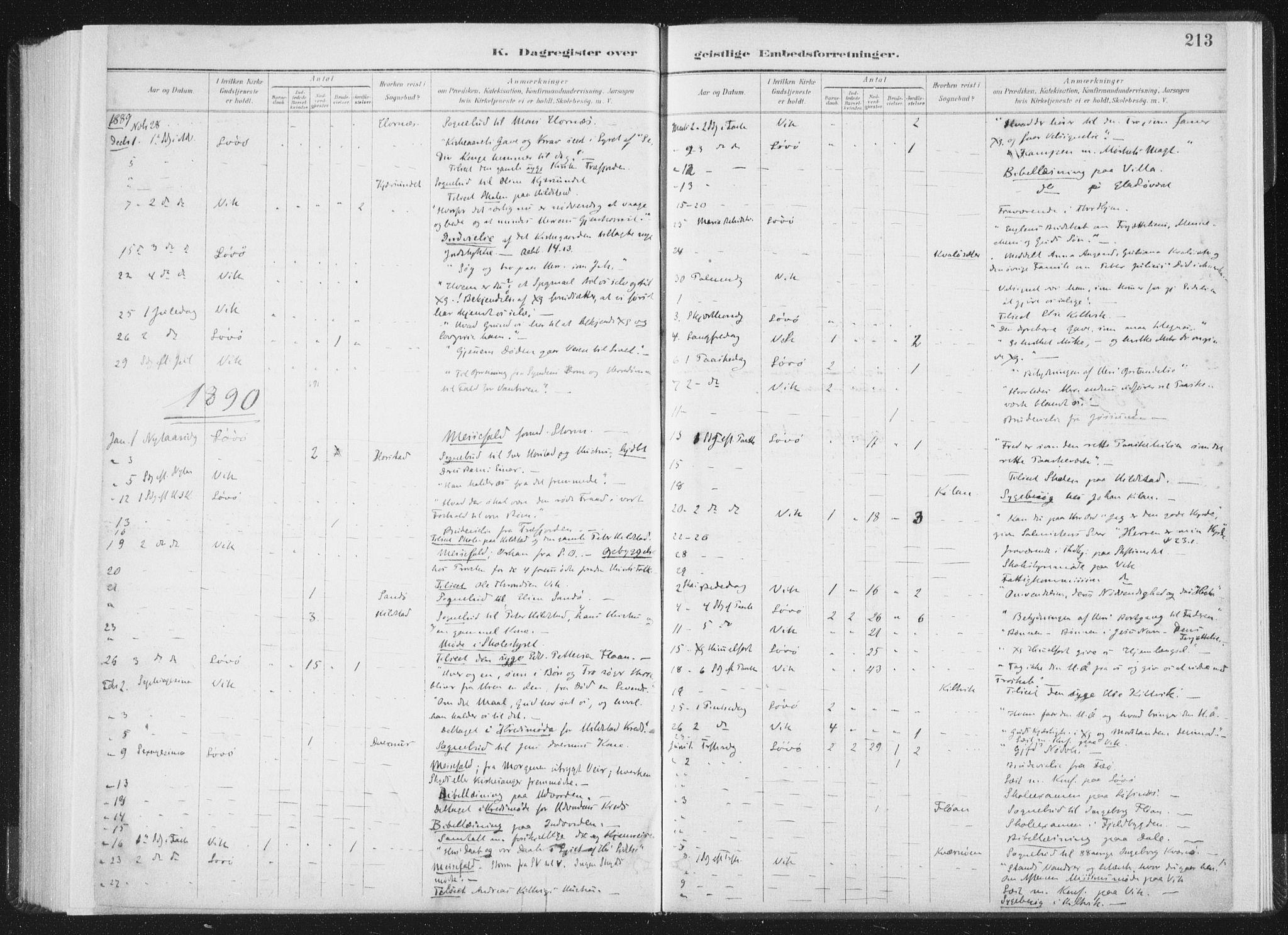 SAT, Ministerialprotokoller, klokkerbøker og fødselsregistre - Nord-Trøndelag, 771/L0597: Ministerialbok nr. 771A04, 1885-1910, s. 213