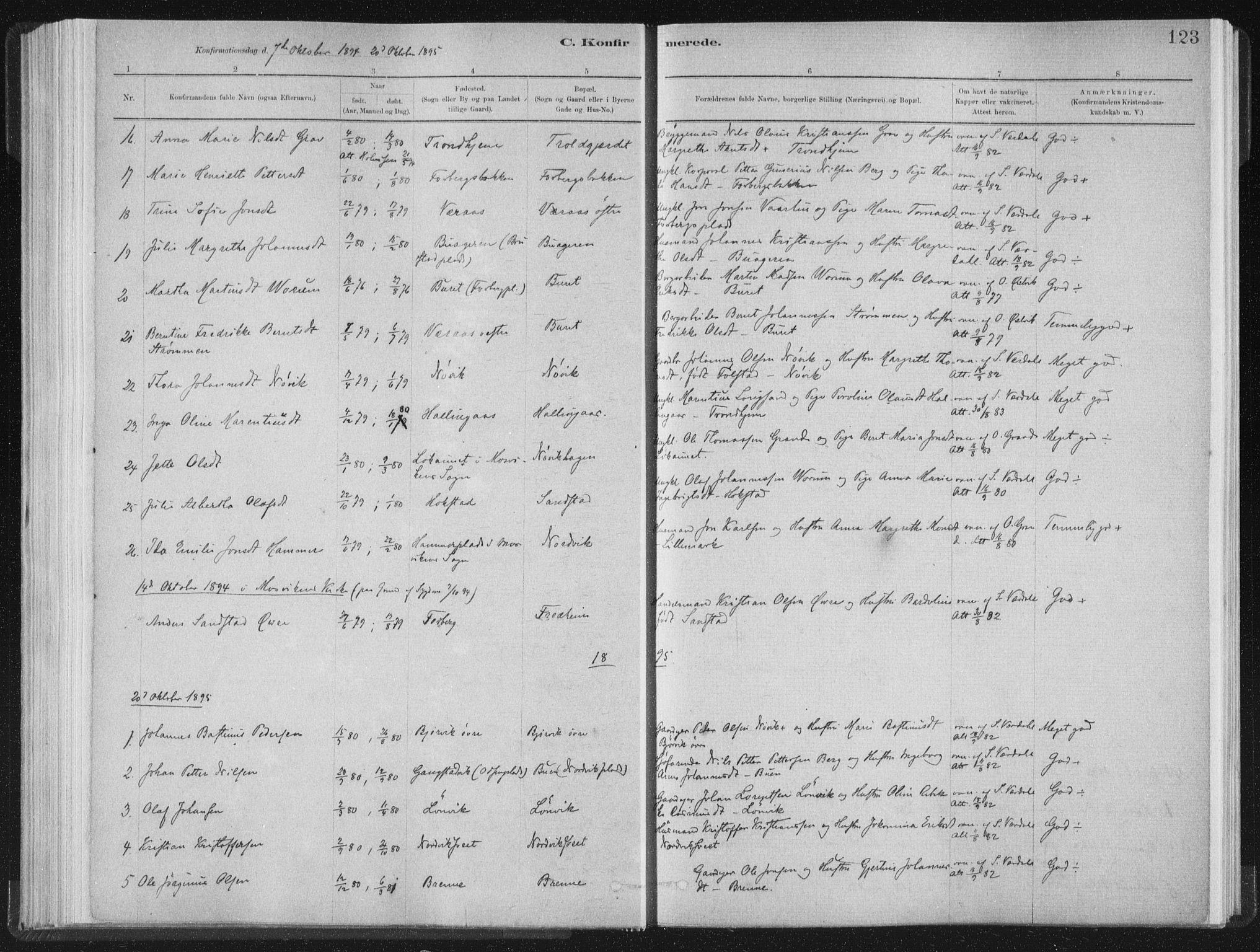 SAT, Ministerialprotokoller, klokkerbøker og fødselsregistre - Nord-Trøndelag, 722/L0220: Ministerialbok nr. 722A07, 1881-1908, s. 123