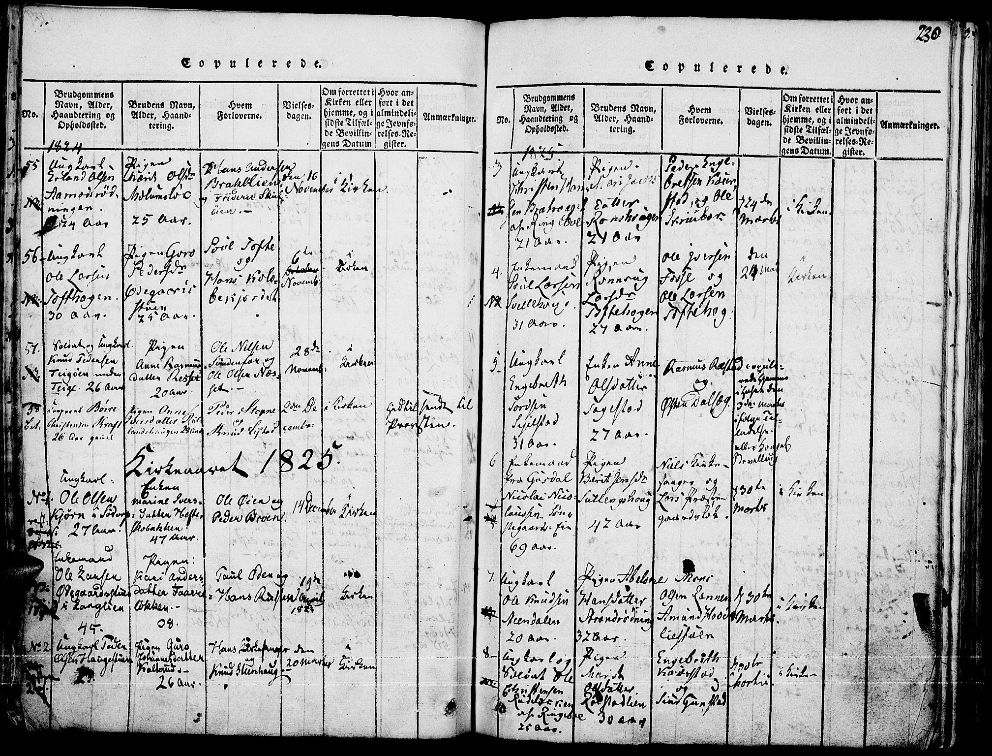 SAH, Fron prestekontor, H/Ha/Haa/L0002: Ministerialbok nr. 2, 1816-1827, s. 230