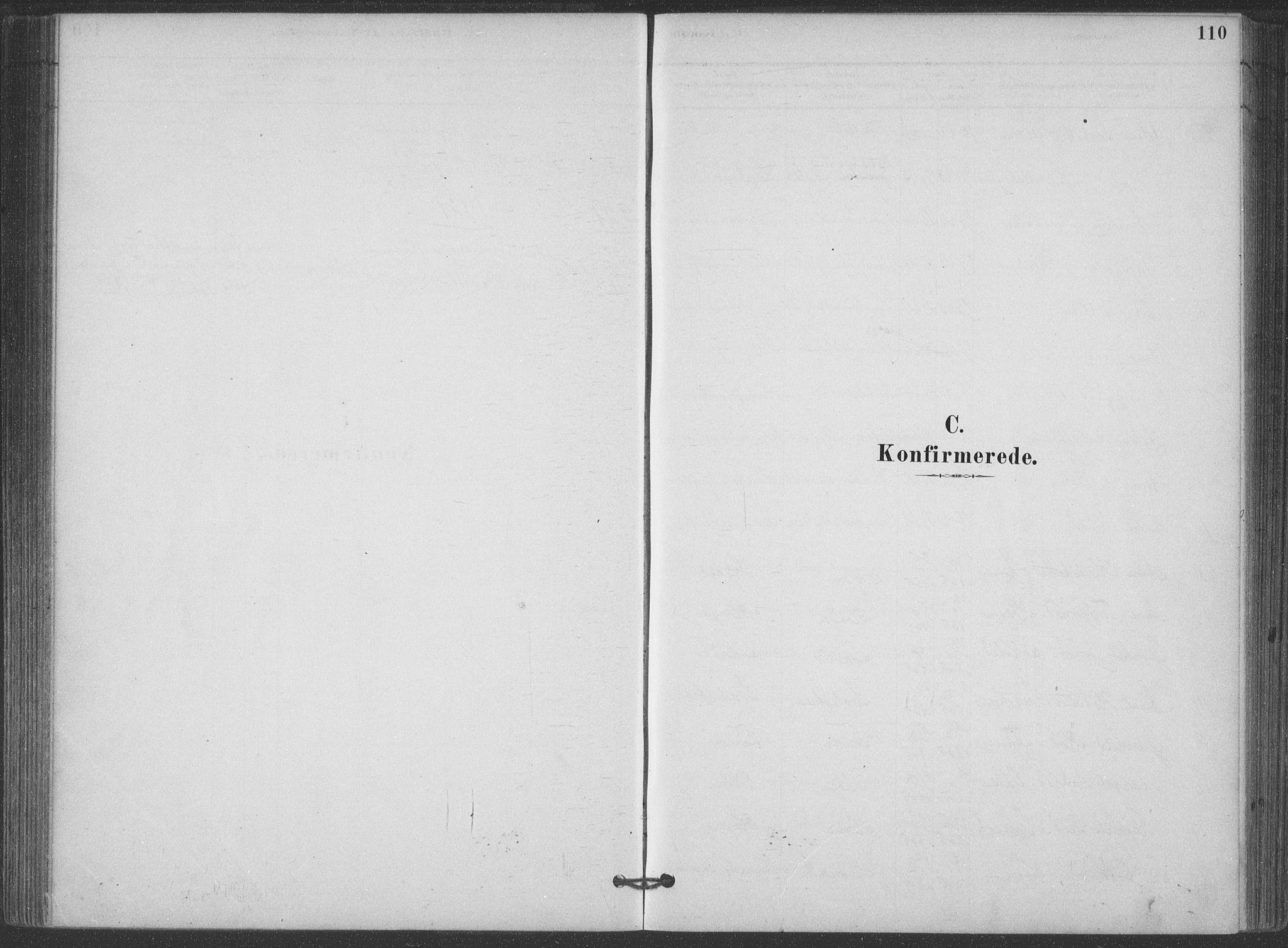 SAKO, Hjartdal kirkebøker, F/Fa/L0010: Ministerialbok nr. I 10, 1880-1929, s. 110