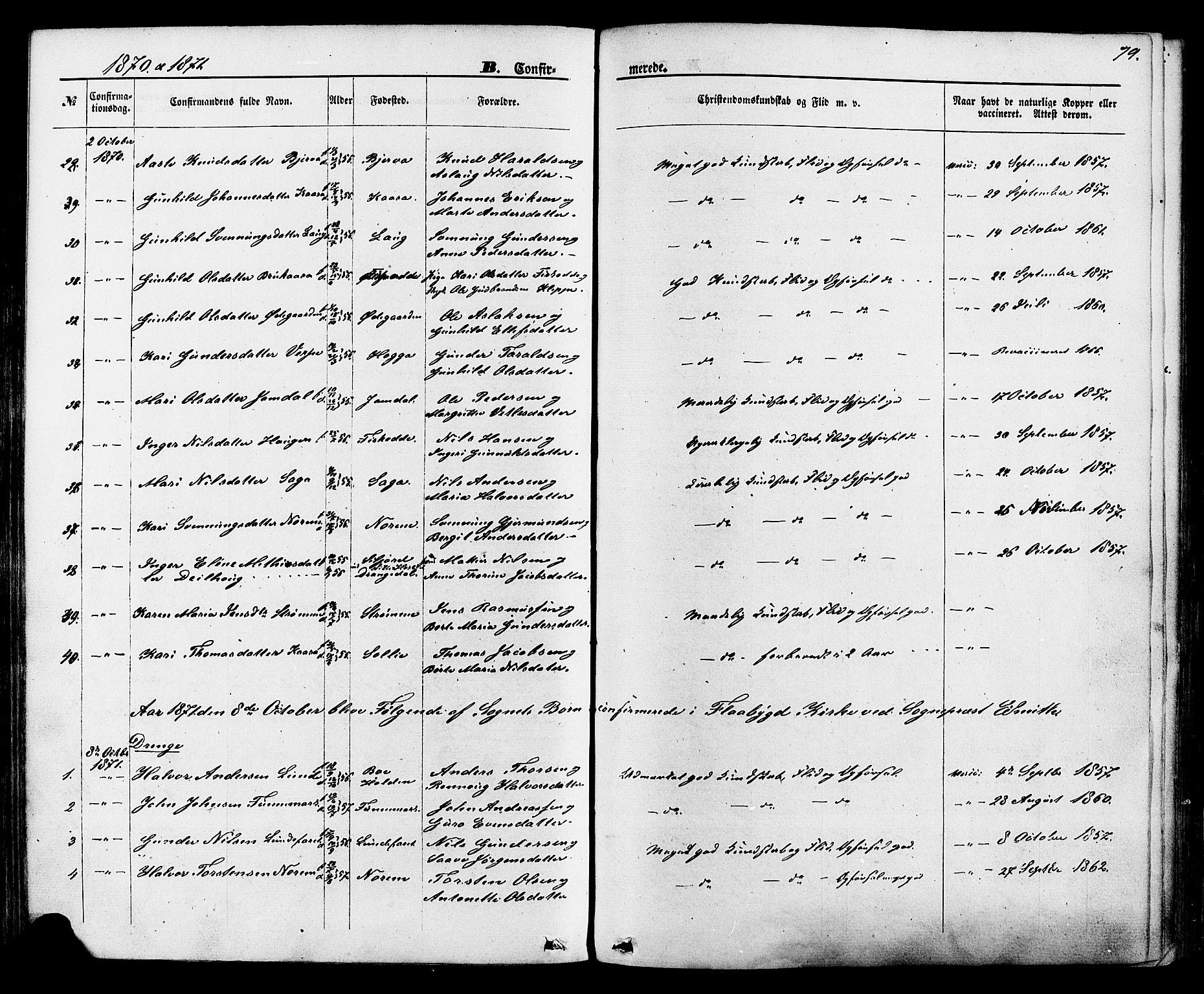 SAKO, Lunde kirkebøker, F/Fa/L0001: Ministerialbok nr. I 1, 1866-1883, s. 79