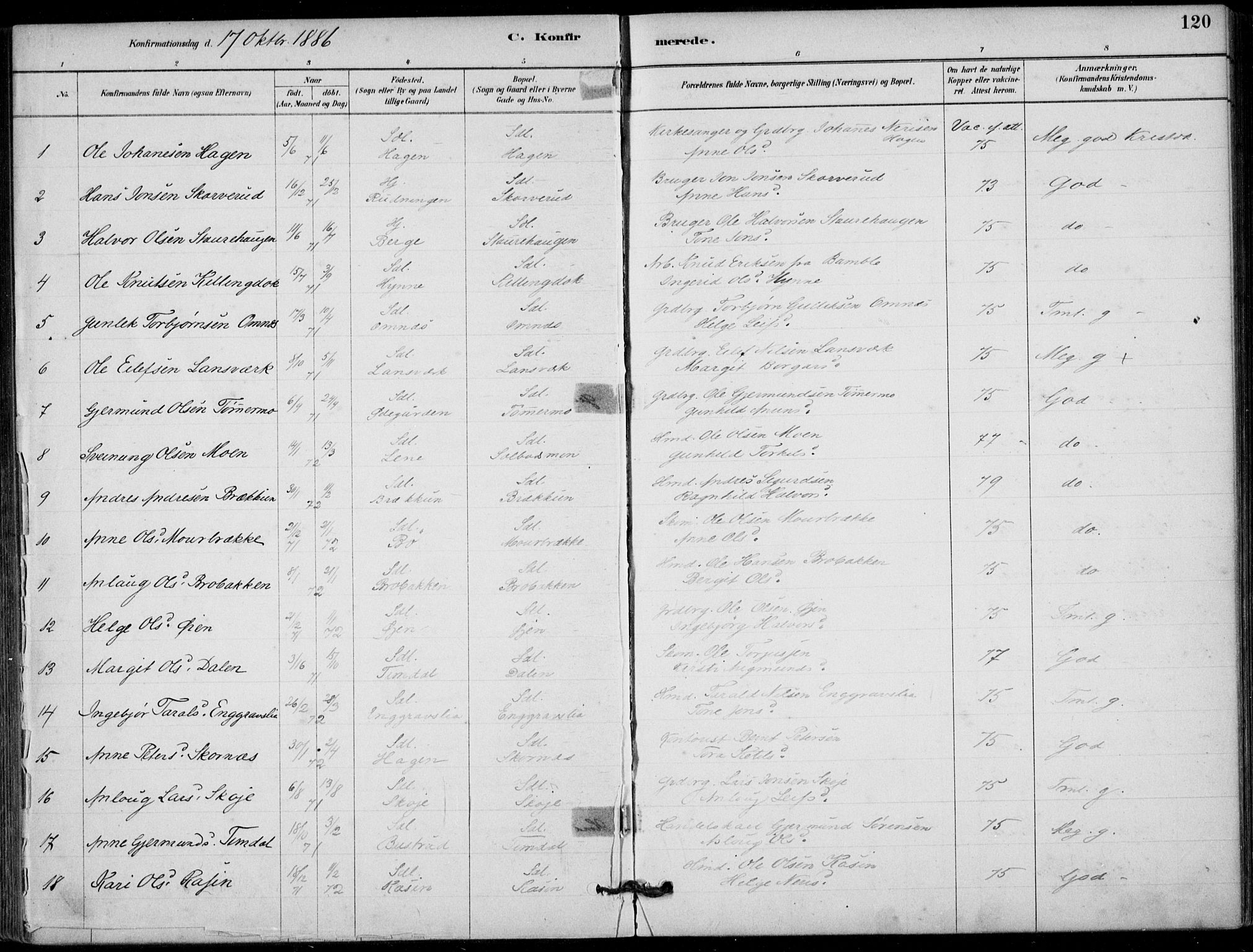 SAKO, Hjartdal kirkebøker, F/Fb/L0002: Ministerialbok nr. II 2, 1880-1932, s. 120