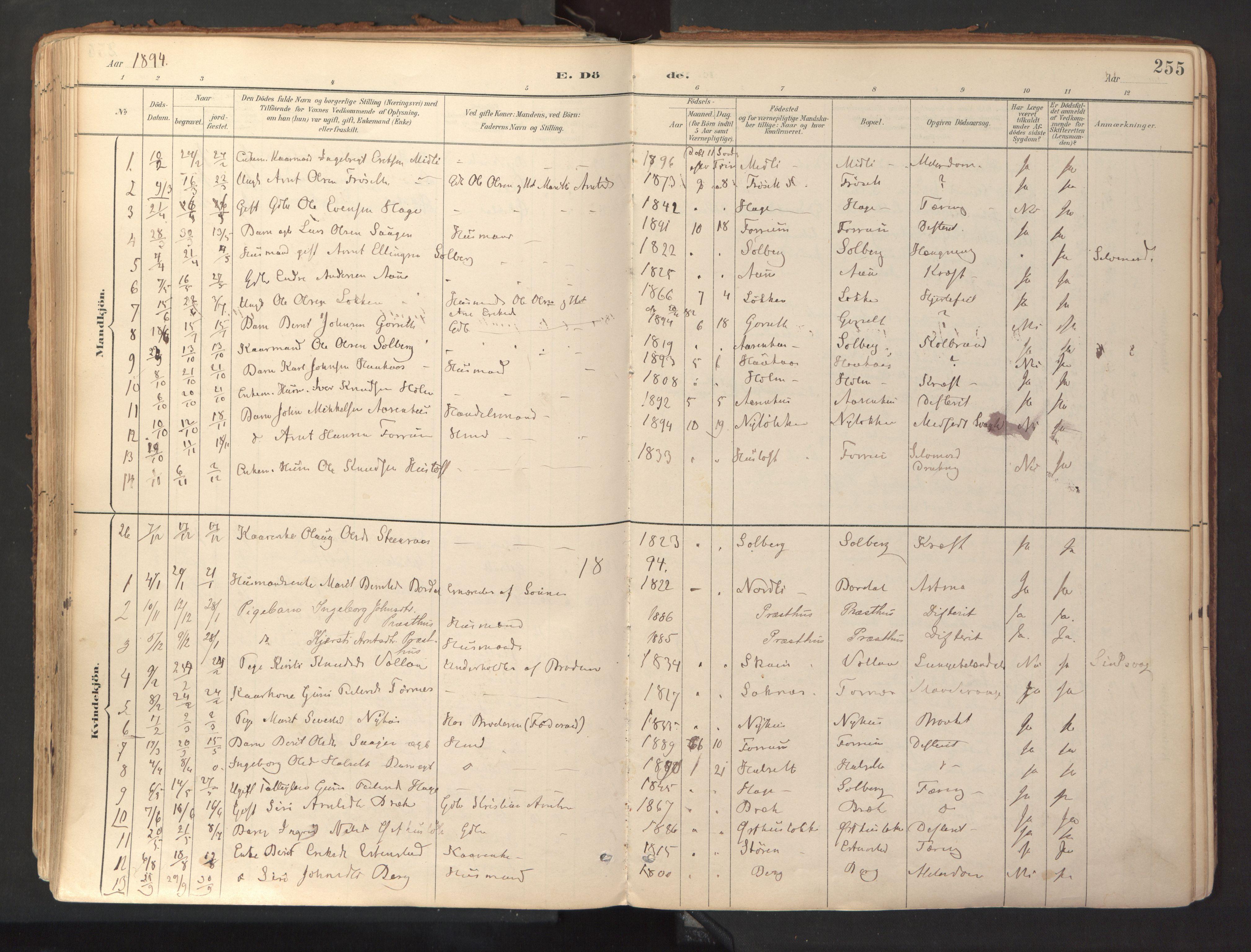 SAT, Ministerialprotokoller, klokkerbøker og fødselsregistre - Sør-Trøndelag, 689/L1041: Ministerialbok nr. 689A06, 1891-1923, s. 255