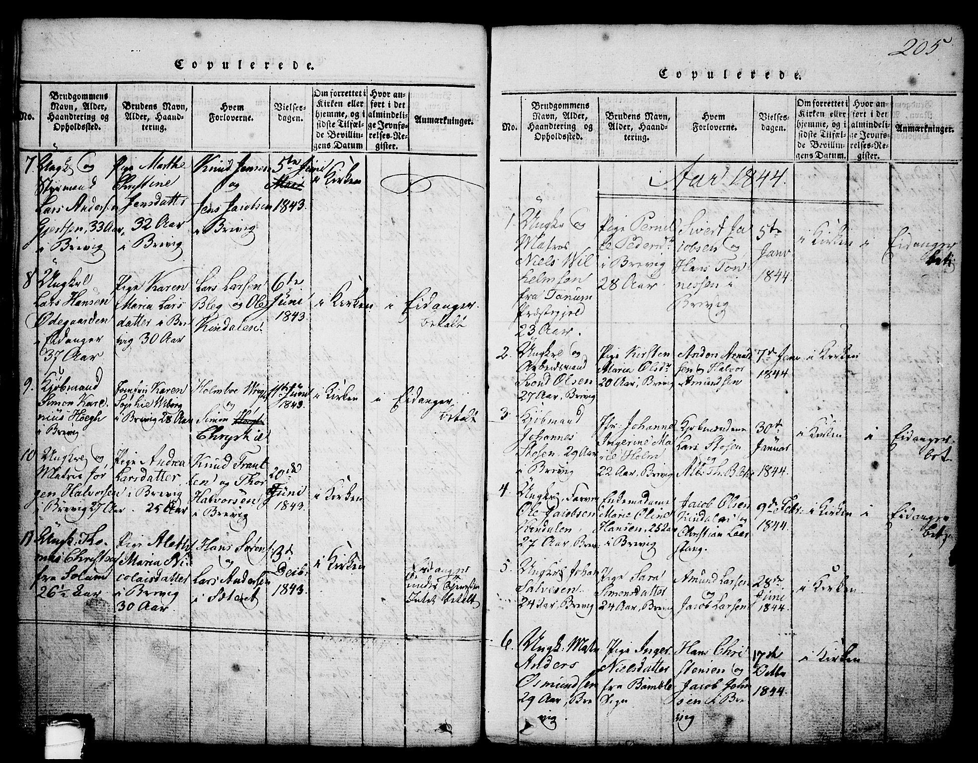 SAKO, Brevik kirkebøker, G/Ga/L0001: Klokkerbok nr. 1, 1814-1845, s. 205
