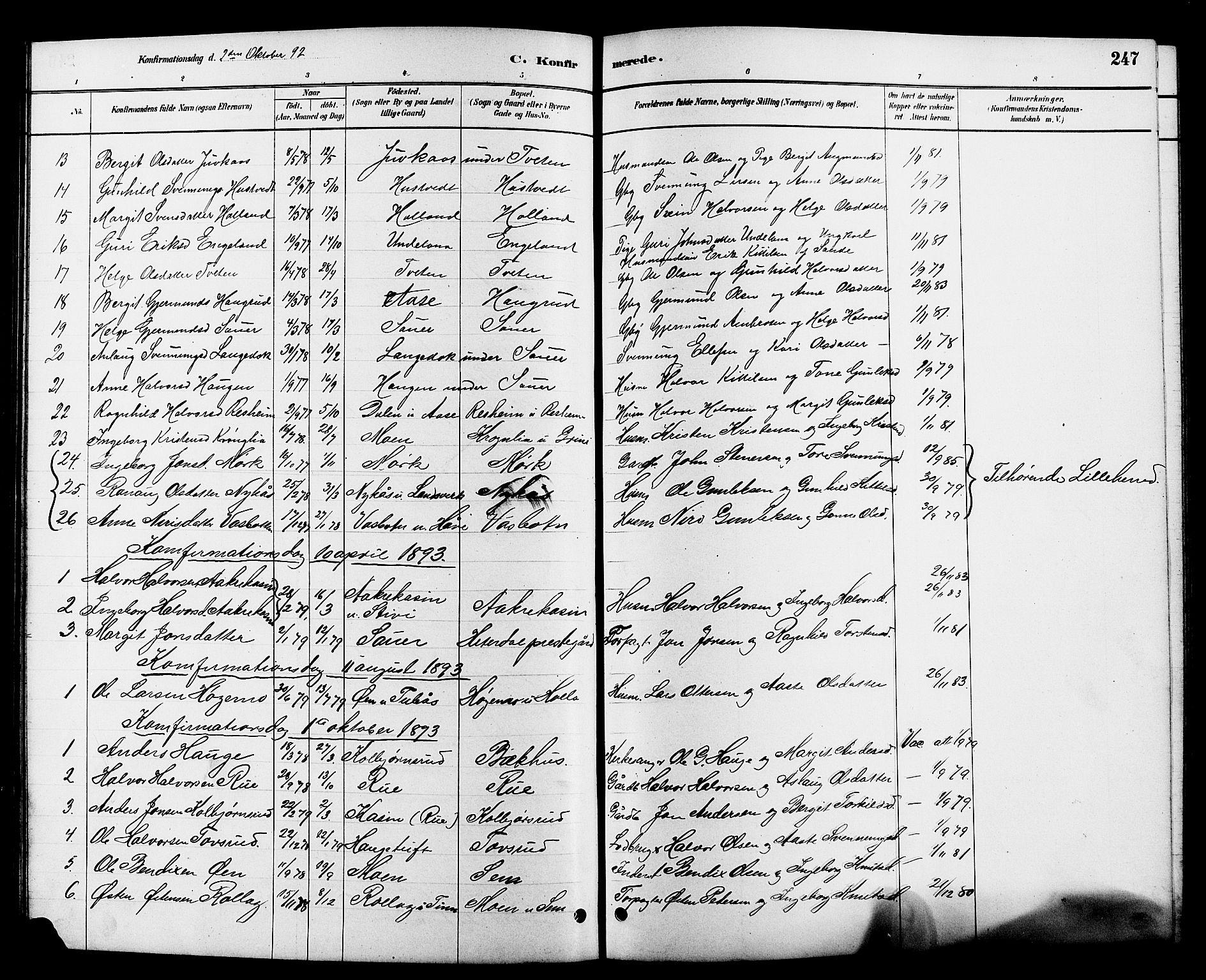 SAKO, Heddal kirkebøker, G/Ga/L0002: Klokkerbok nr. I 2, 1879-1908, s. 247