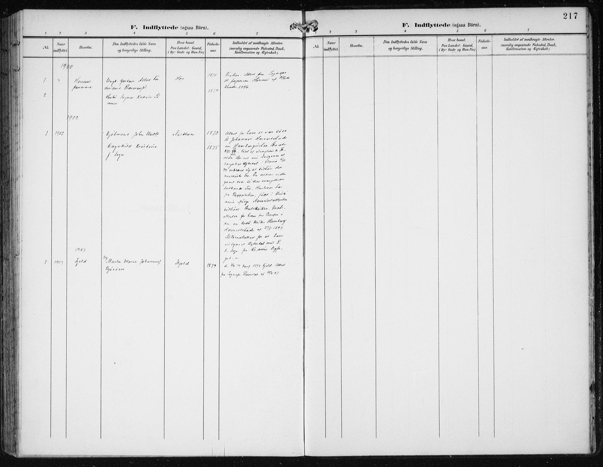 SAB, Birkeland Sokneprestembete, H/Haa: Ministerialbok nr. A 3, 1900-1912, s. 217