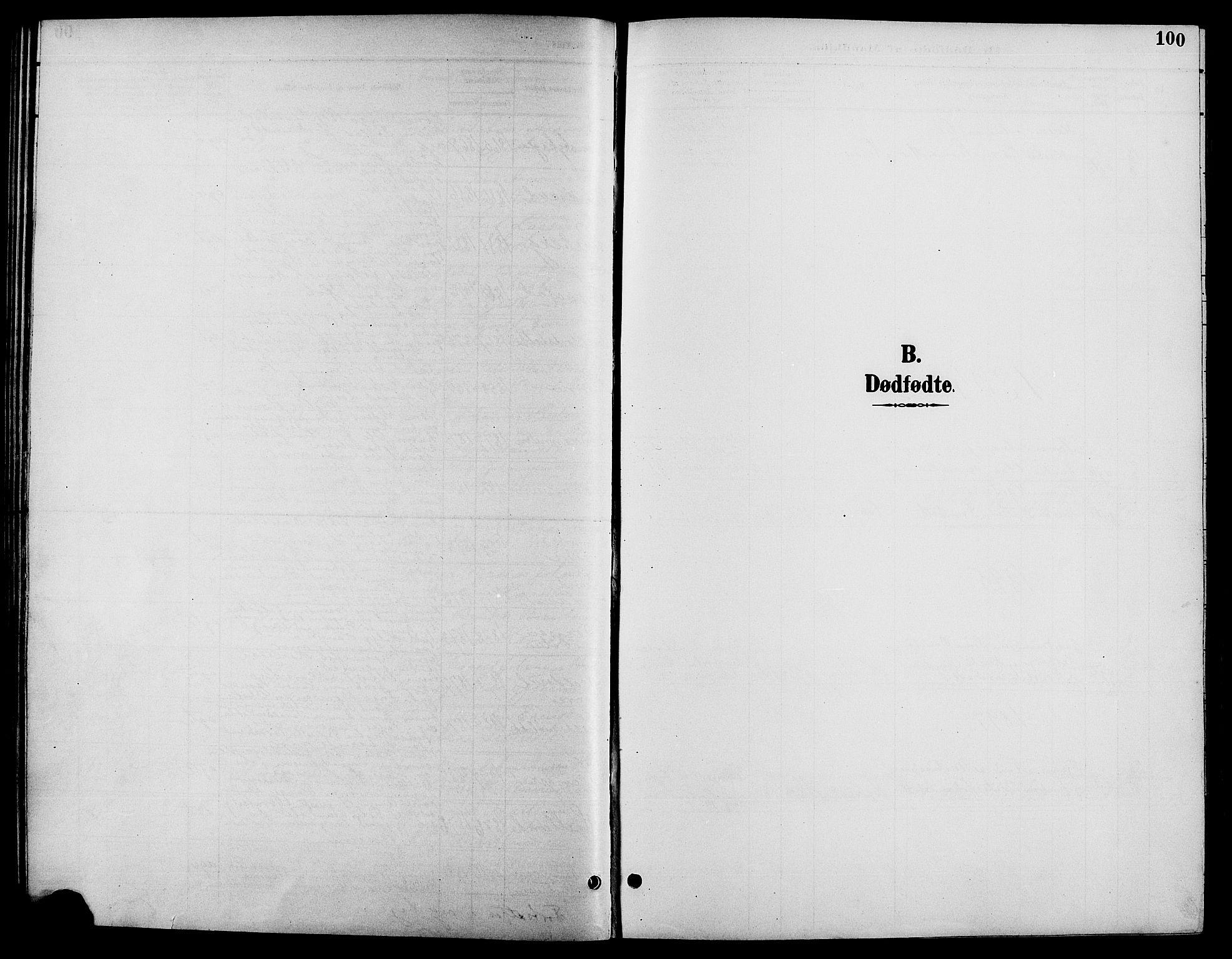 SAH, Biri prestekontor, Klokkerbok nr. 4, 1892-1909, s. 100