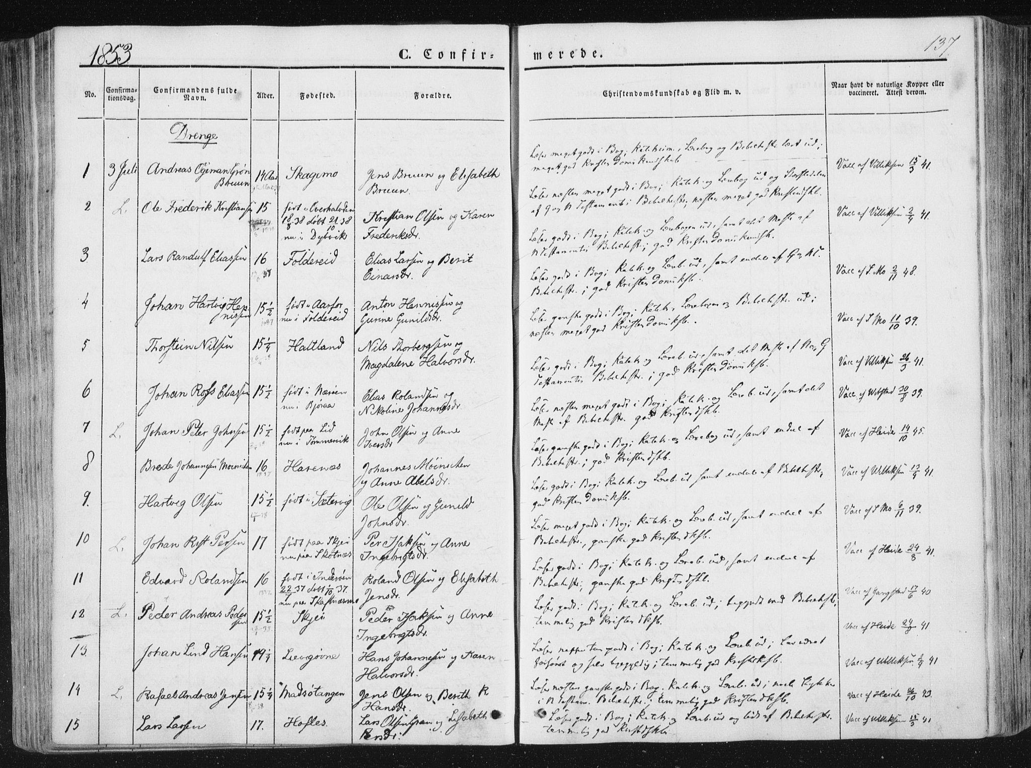 SAT, Ministerialprotokoller, klokkerbøker og fødselsregistre - Nord-Trøndelag, 780/L0640: Ministerialbok nr. 780A05, 1845-1856, s. 137