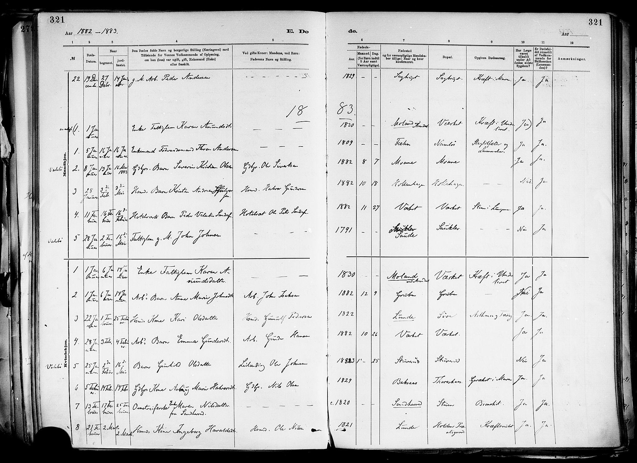 SAKO, Holla kirkebøker, F/Fa/L0008: Ministerialbok nr. 8, 1882-1897, s. 321
