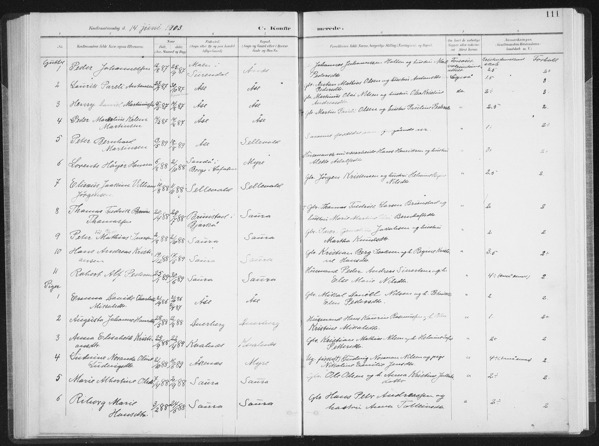 SAT, Ministerialprotokoller, klokkerbøker og fødselsregistre - Nordland, 897/L1400: Ministerialbok nr. 897A07, 1897-1908, s. 111