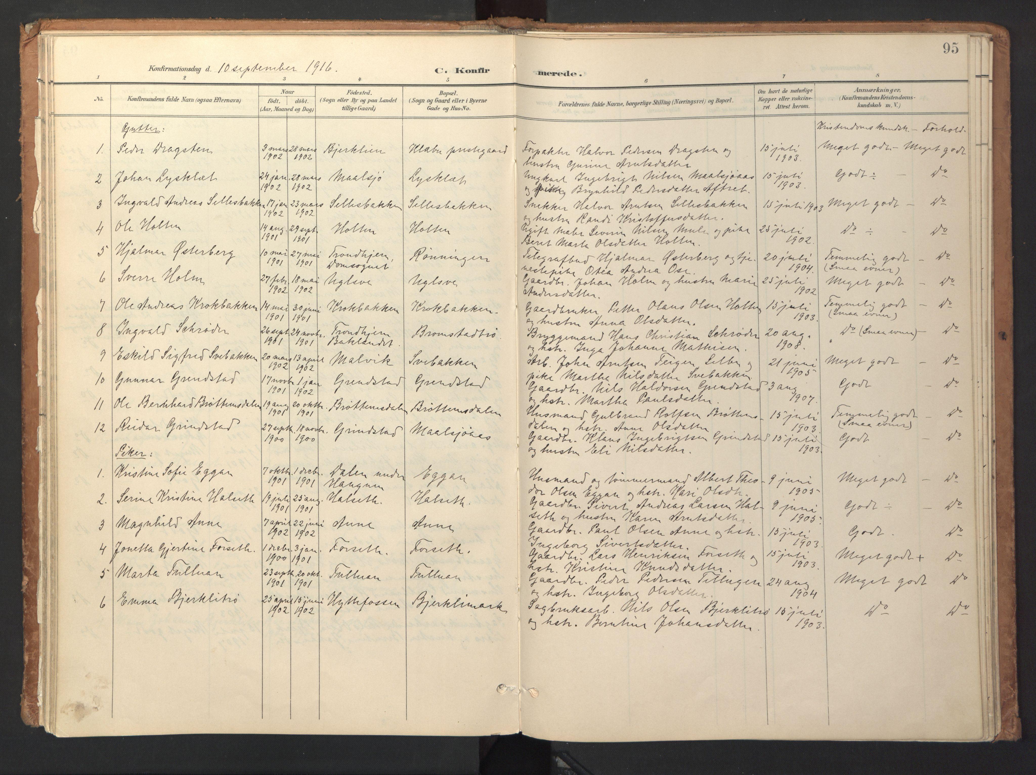 SAT, Ministerialprotokoller, klokkerbøker og fødselsregistre - Sør-Trøndelag, 618/L0448: Ministerialbok nr. 618A11, 1898-1916, s. 95
