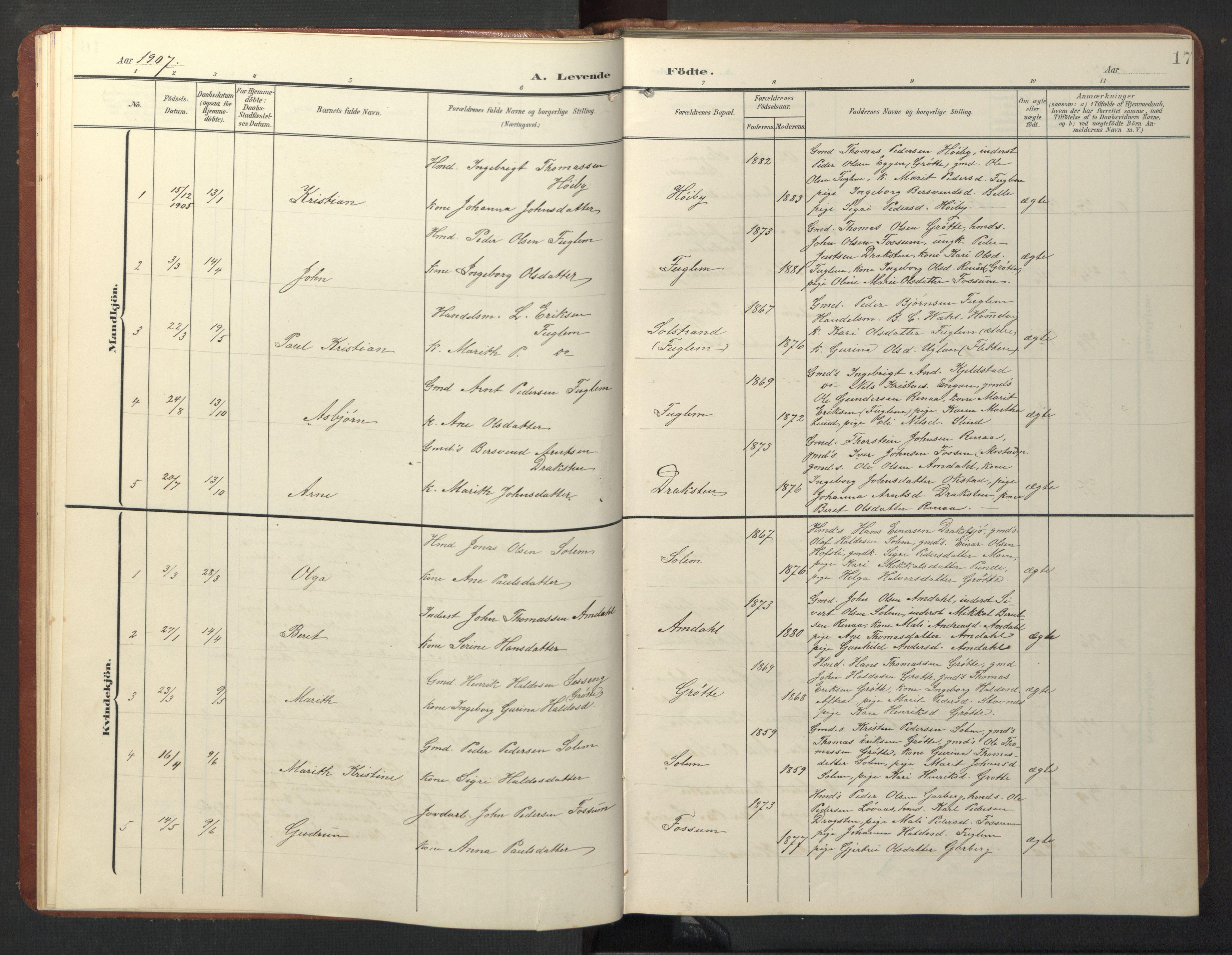 SAT, Ministerialprotokoller, klokkerbøker og fødselsregistre - Sør-Trøndelag, 696/L1161: Klokkerbok nr. 696C01, 1902-1950, s. 17