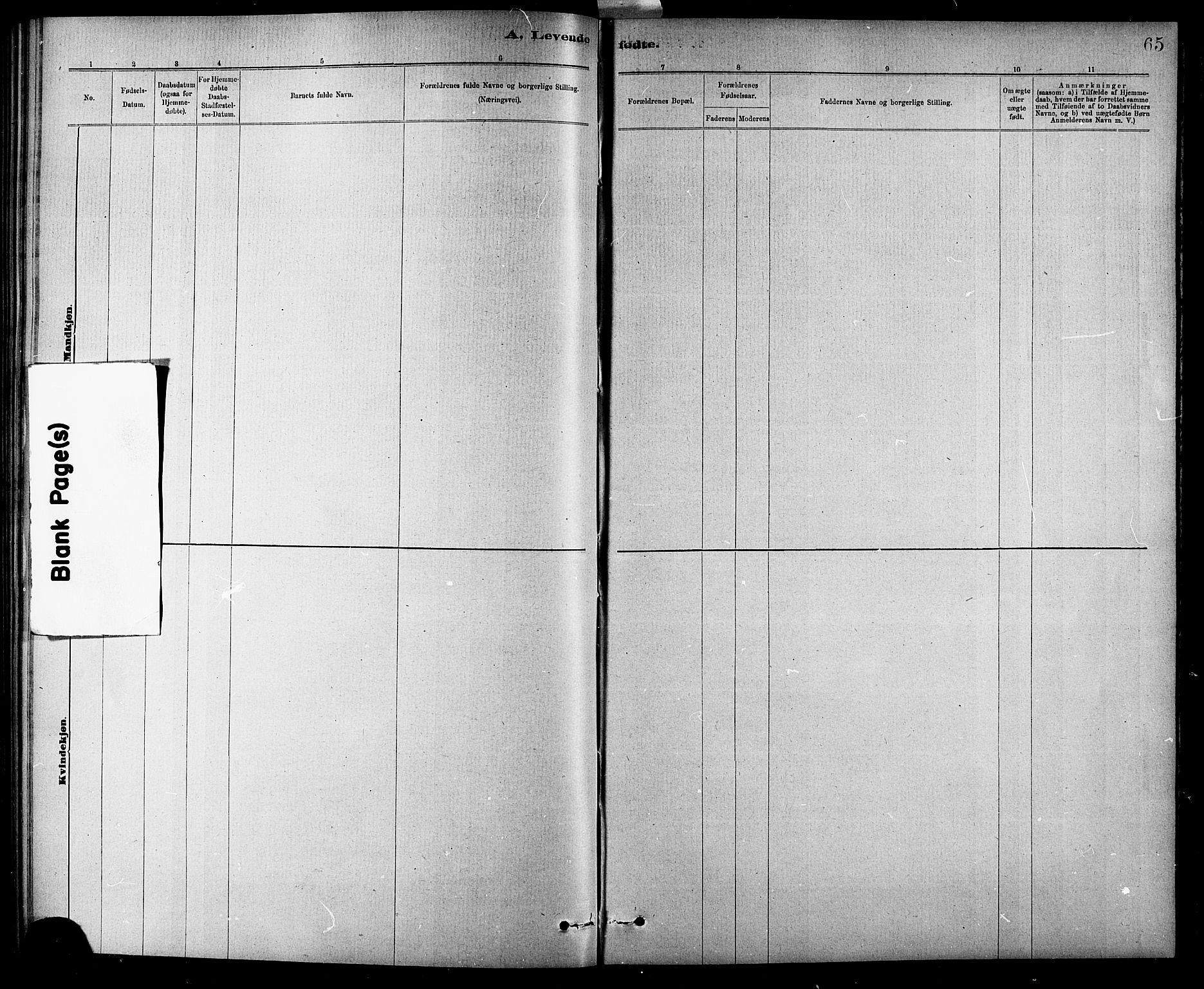 SAT, Ministerialprotokoller, klokkerbøker og fødselsregistre - Sør-Trøndelag, 618/L0452: Klokkerbok nr. 618C03, 1884-1906, s. 65