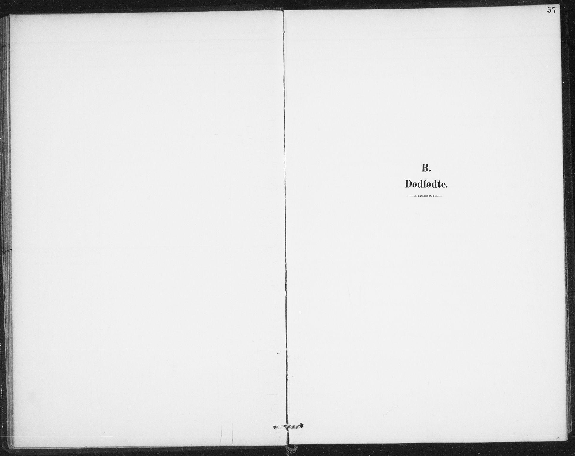 SAO, Varteig prestekontor Kirkebøker, F/Fa/L0003: Ministerialbok nr. 3, 1899-1919, s. 57