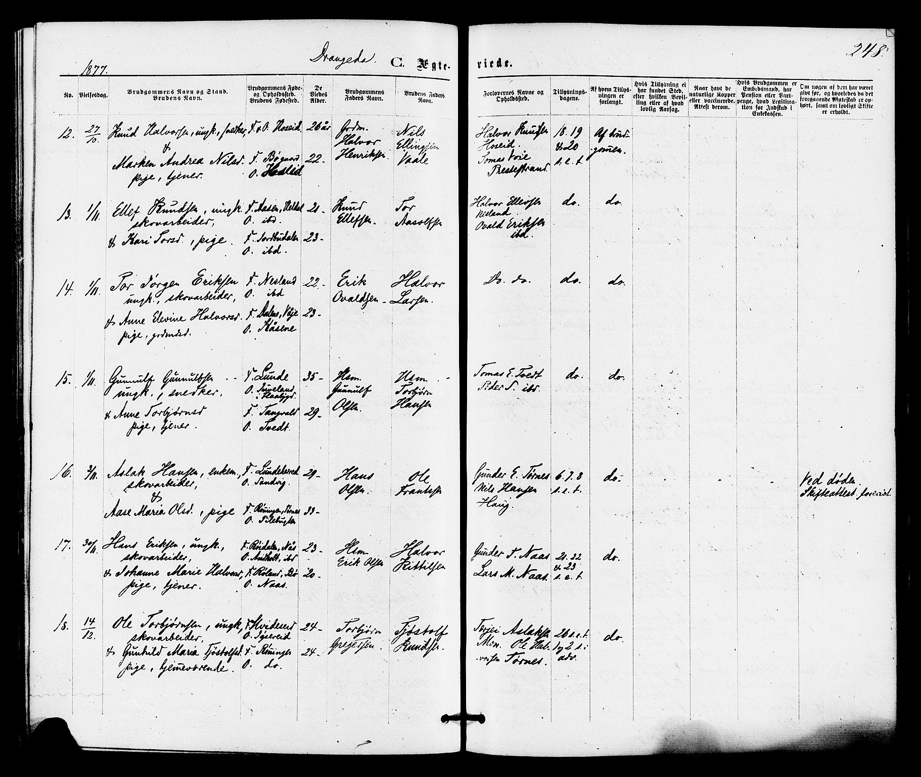 SAKO, Drangedal kirkebøker, F/Fa/L0009: Ministerialbok nr. 9 /1, 1872-1884, s. 248