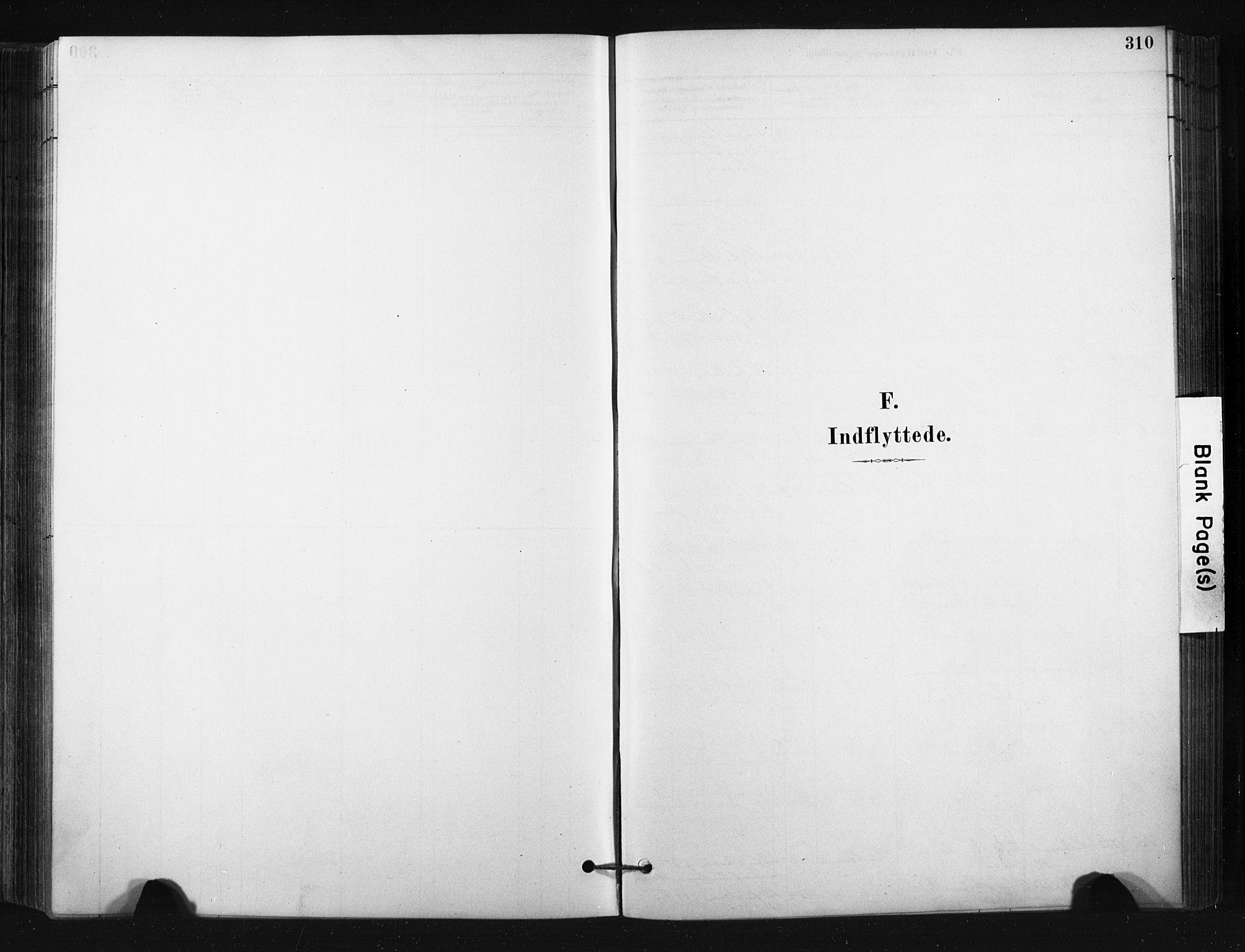 SAKO, Bø kirkebøker, F/Fa/L0010: Ministerialbok nr. 10, 1880-1892, s. 310
