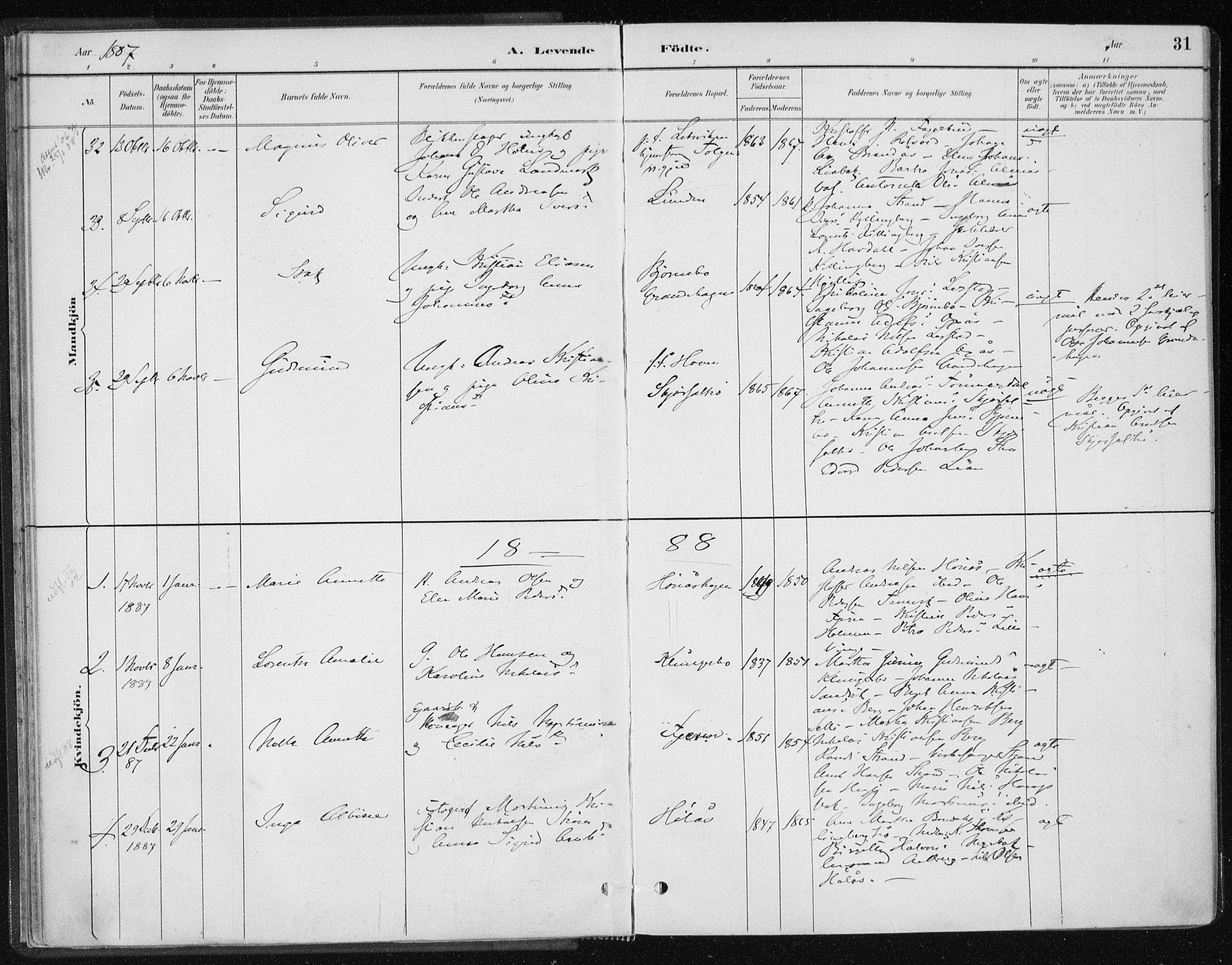 SAT, Ministerialprotokoller, klokkerbøker og fødselsregistre - Nord-Trøndelag, 701/L0010: Ministerialbok nr. 701A10, 1883-1899, s. 31
